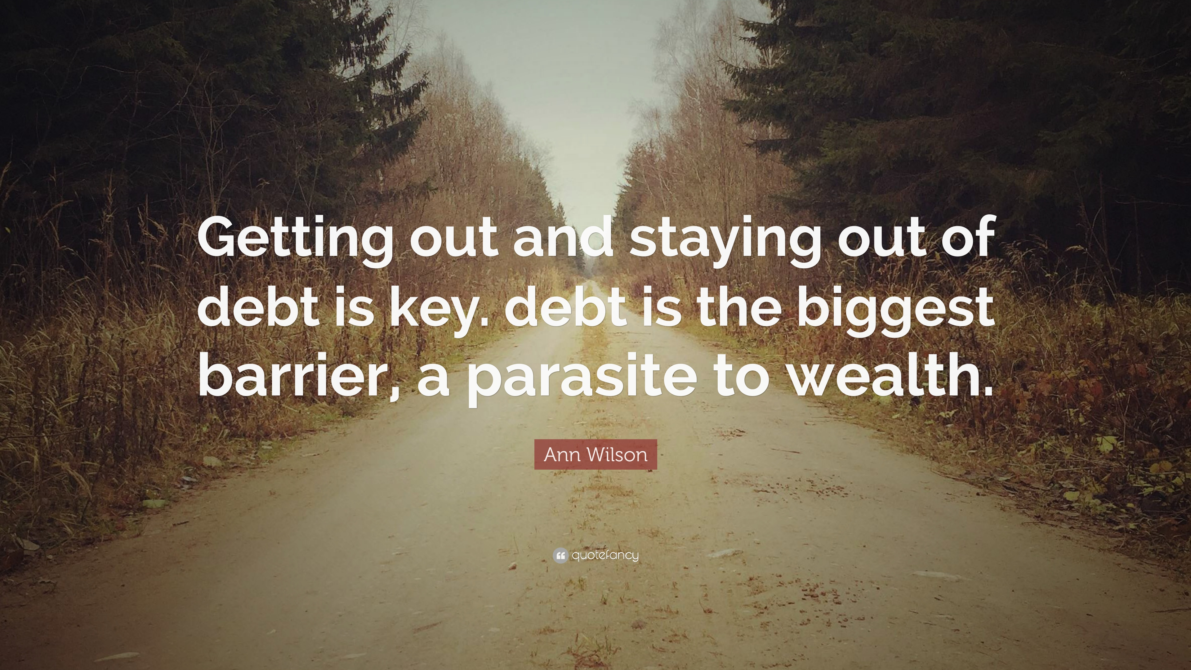 Ann Wilson Quote Getting Out And Staying Out Of Debt Is Key Debt