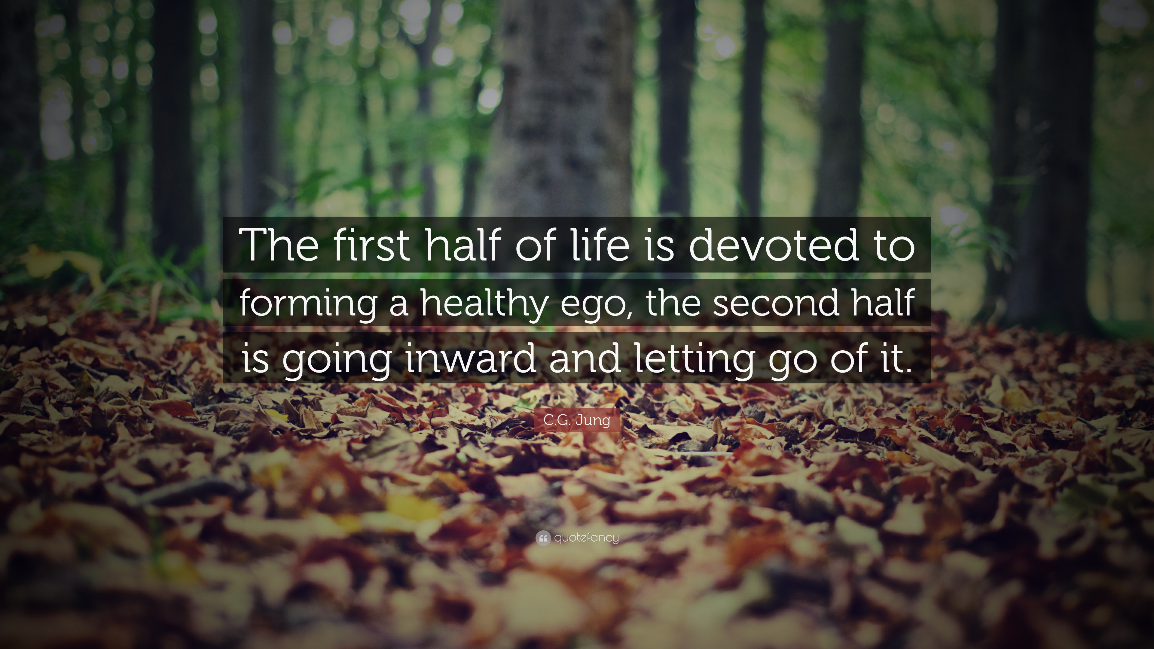 C G Jung Quote The First Half Of Life Is Devoted To Forming A