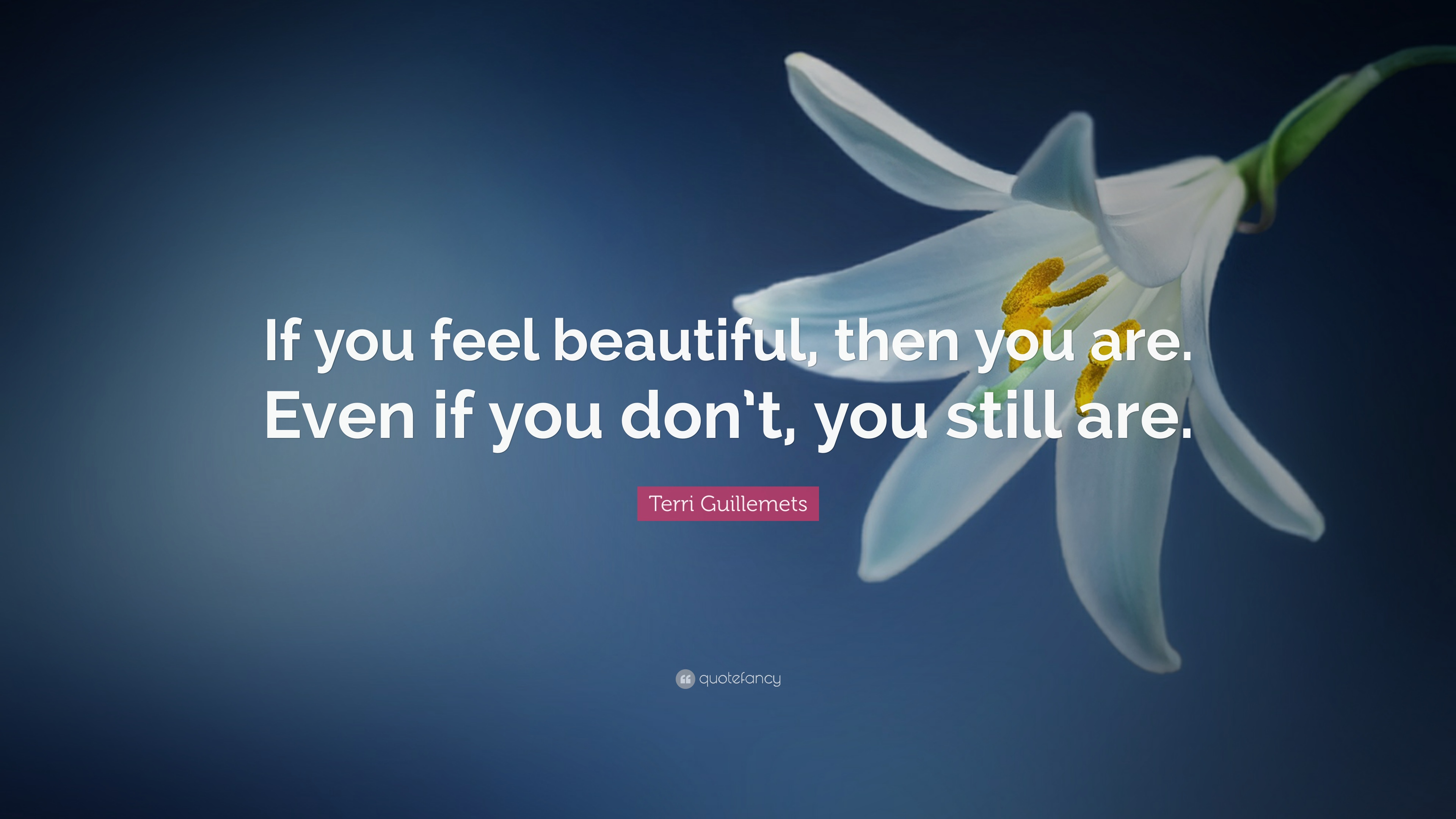 Beauty Quotes 30 Wallpapers Quotefancy