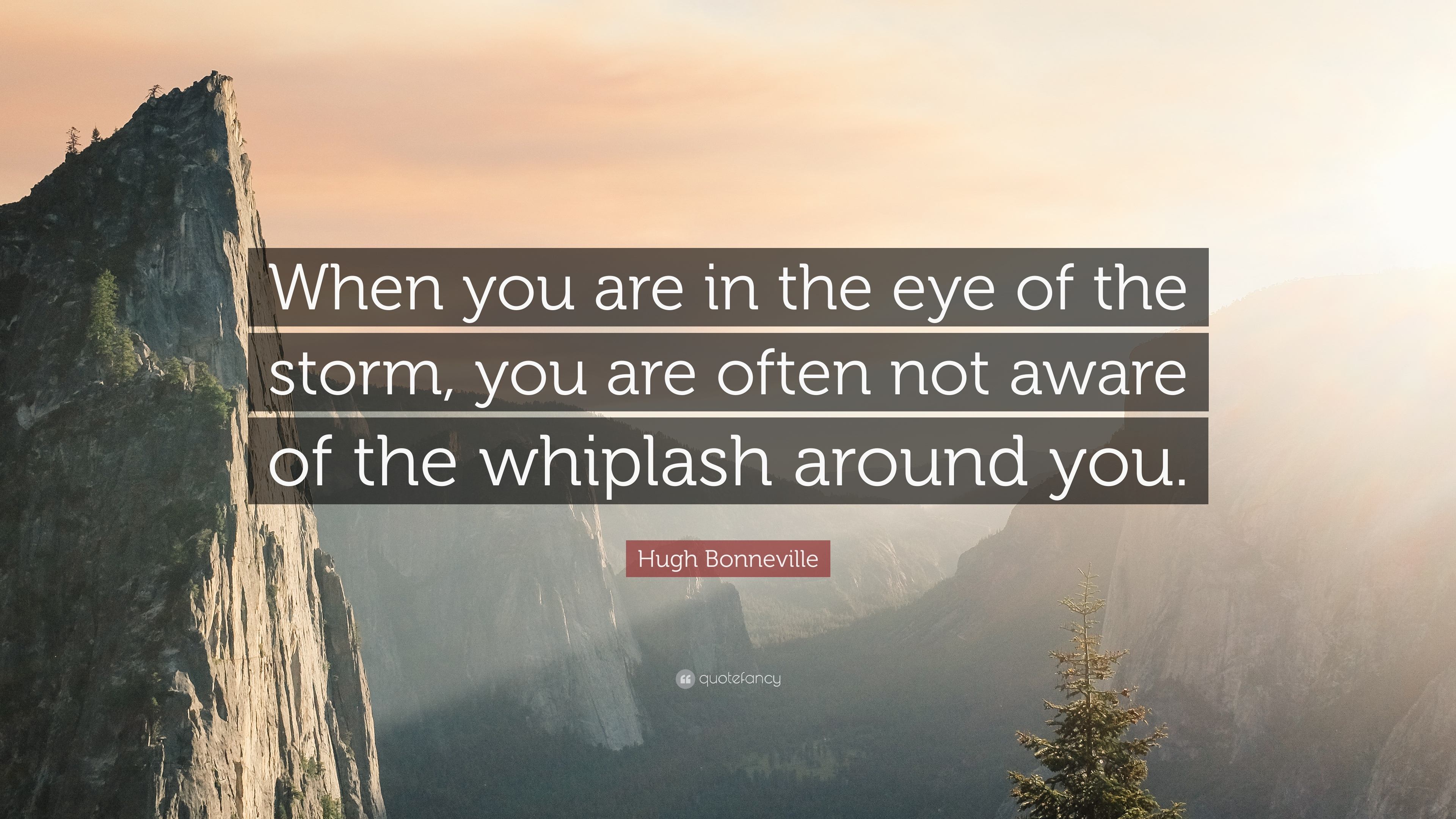 Hugh Bonneville Quote When You Are In The Eye Of The Storm You