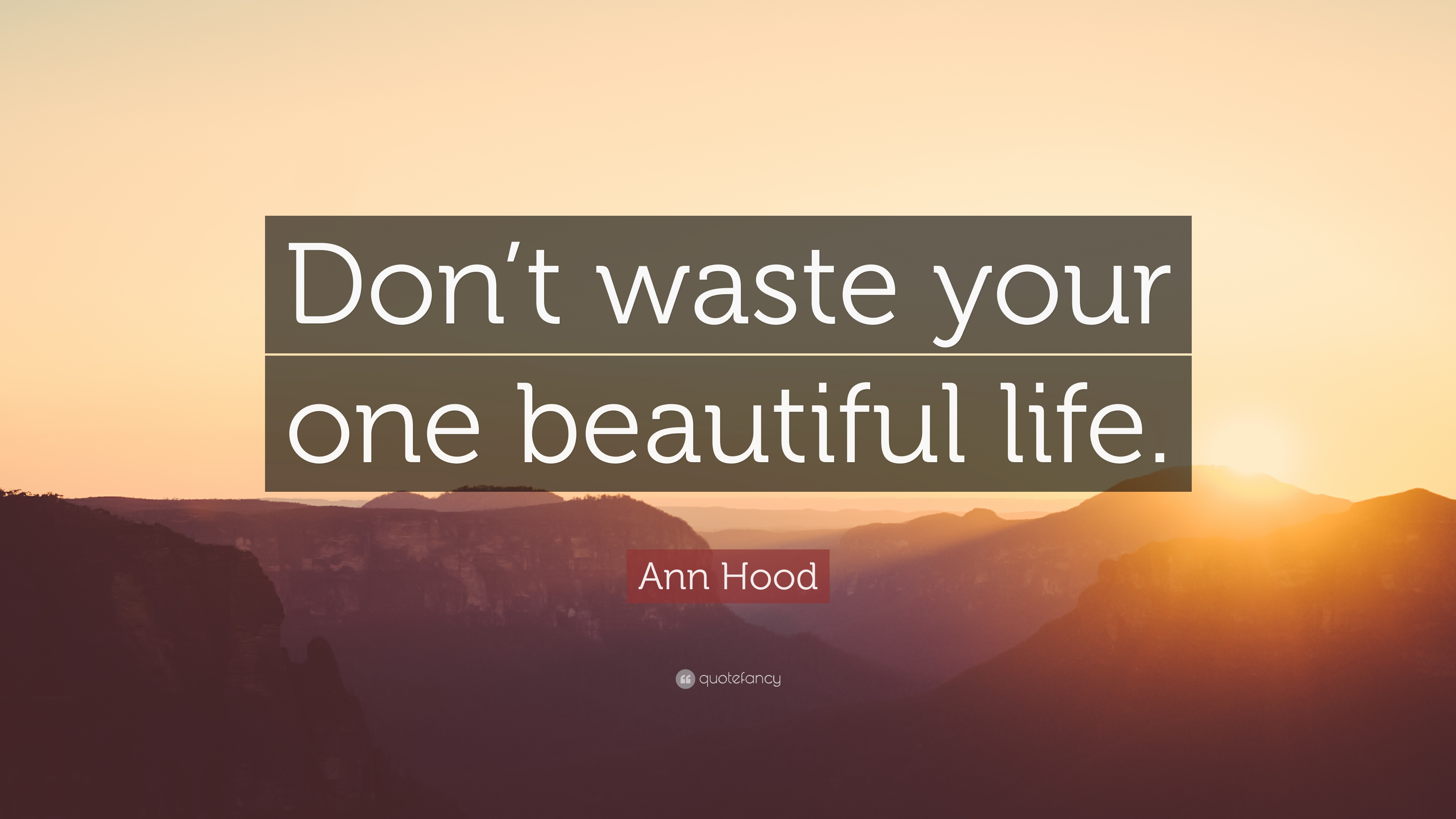 "Hood Quotes About Life Ann Hood Quote ""Don't Waste Your One Beautiful Life."" 9"
