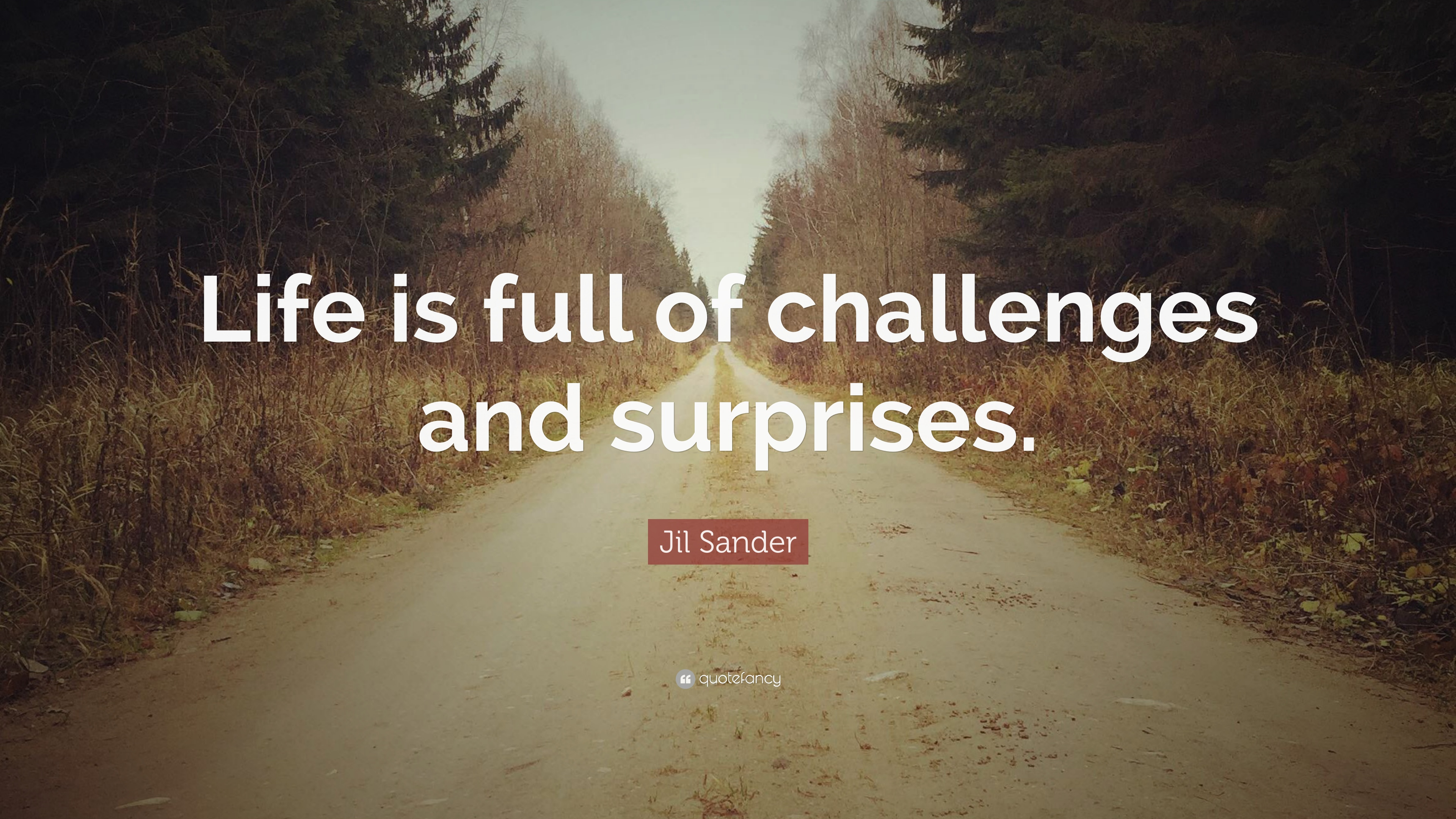 Jil Sander Quote Life Is Full Of Challenges And Surprises 7
