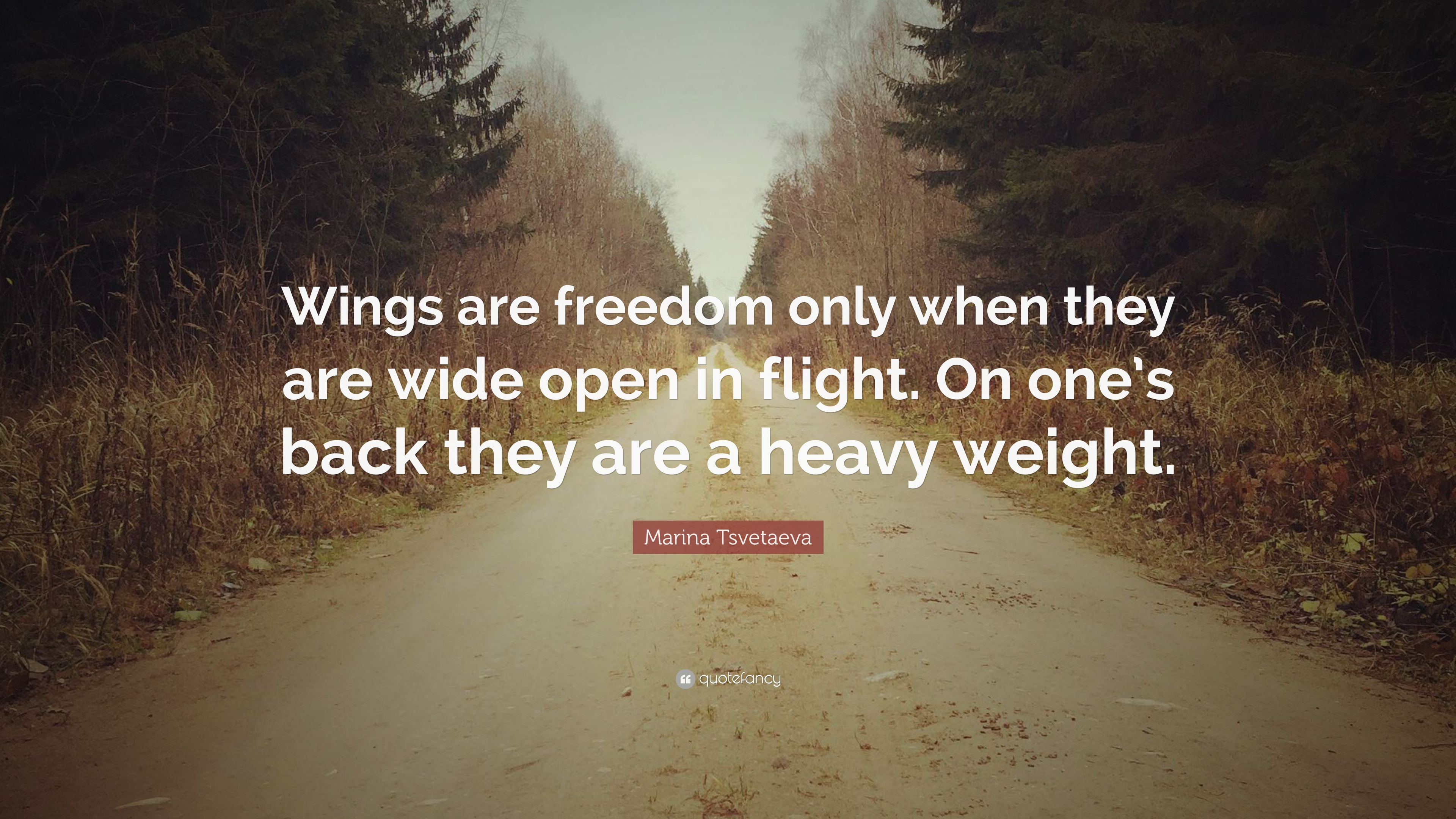 Marina Tsvetaeva Quote Wings Are Freedom Only When They Wide Open In Flight