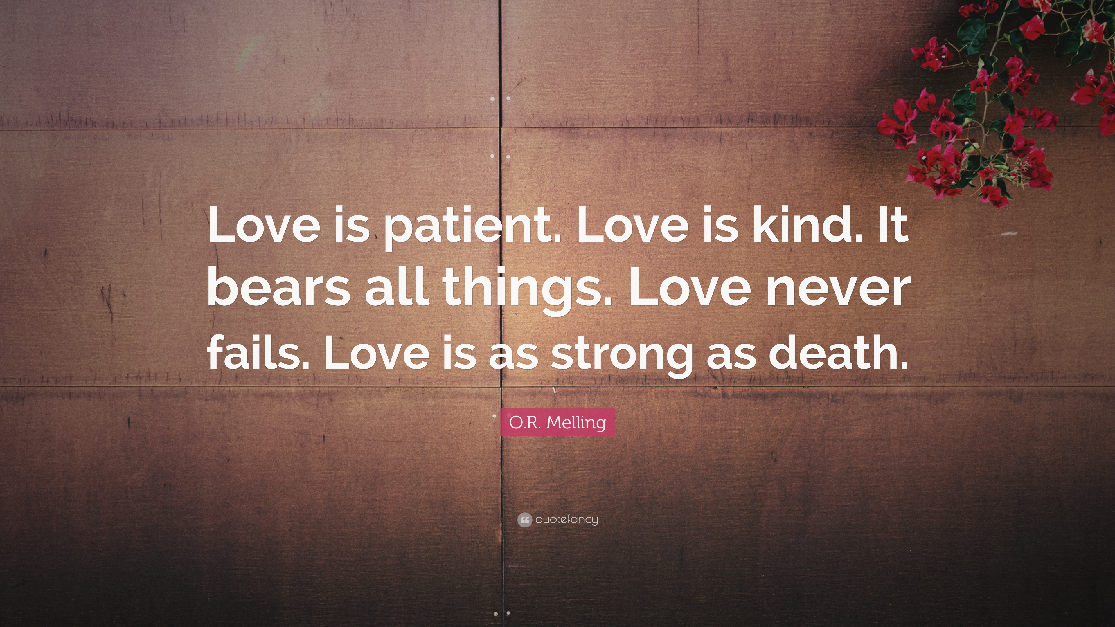 """Love Is Kind Quote O.rmelling Quote """"Love Is Patientlove Is Kindit Bears All"""