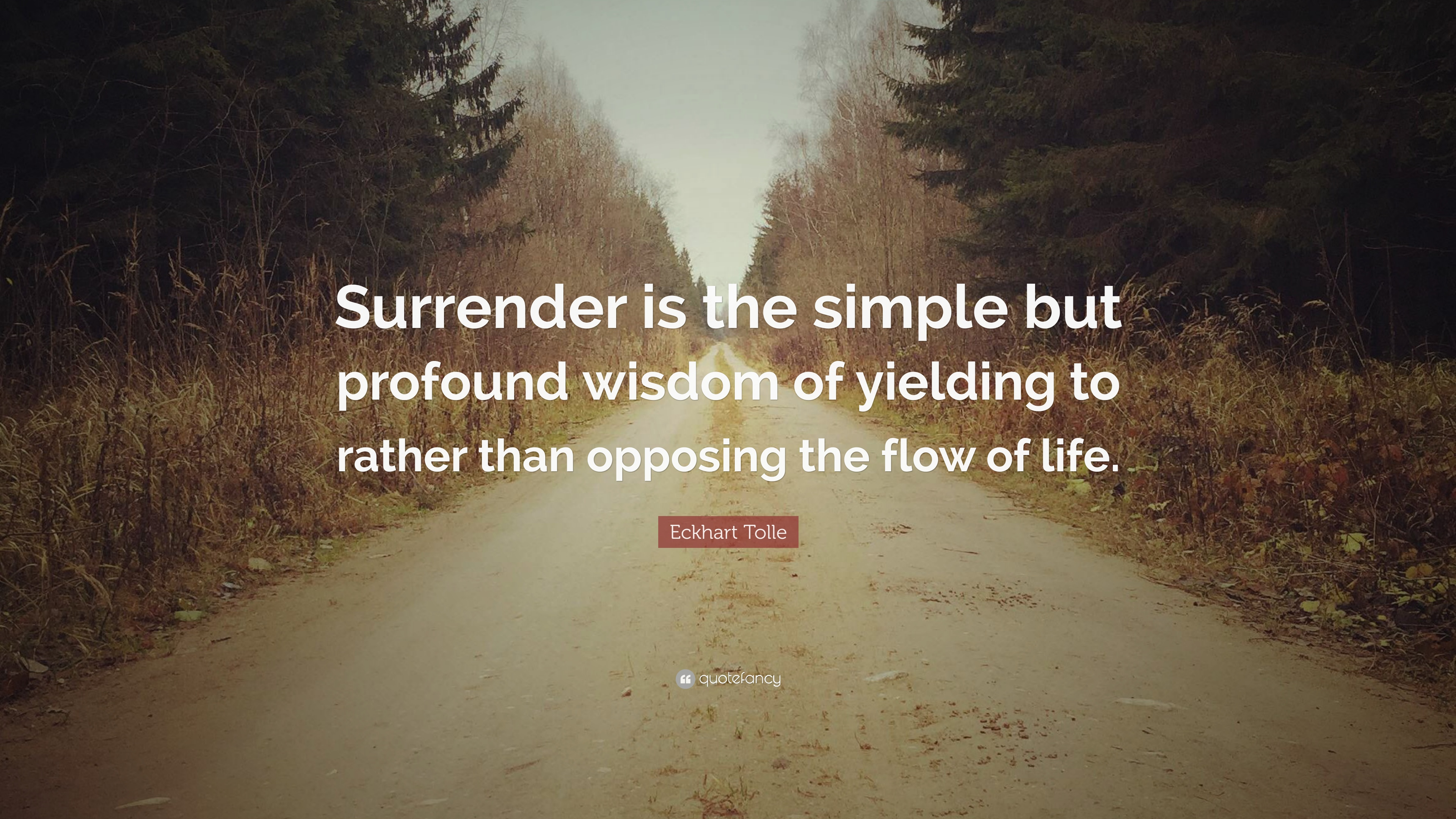 """Profound Quotes About Life Eckhart Tolle Quote """"Surrender Is The Simple But Profound Wisdom"""