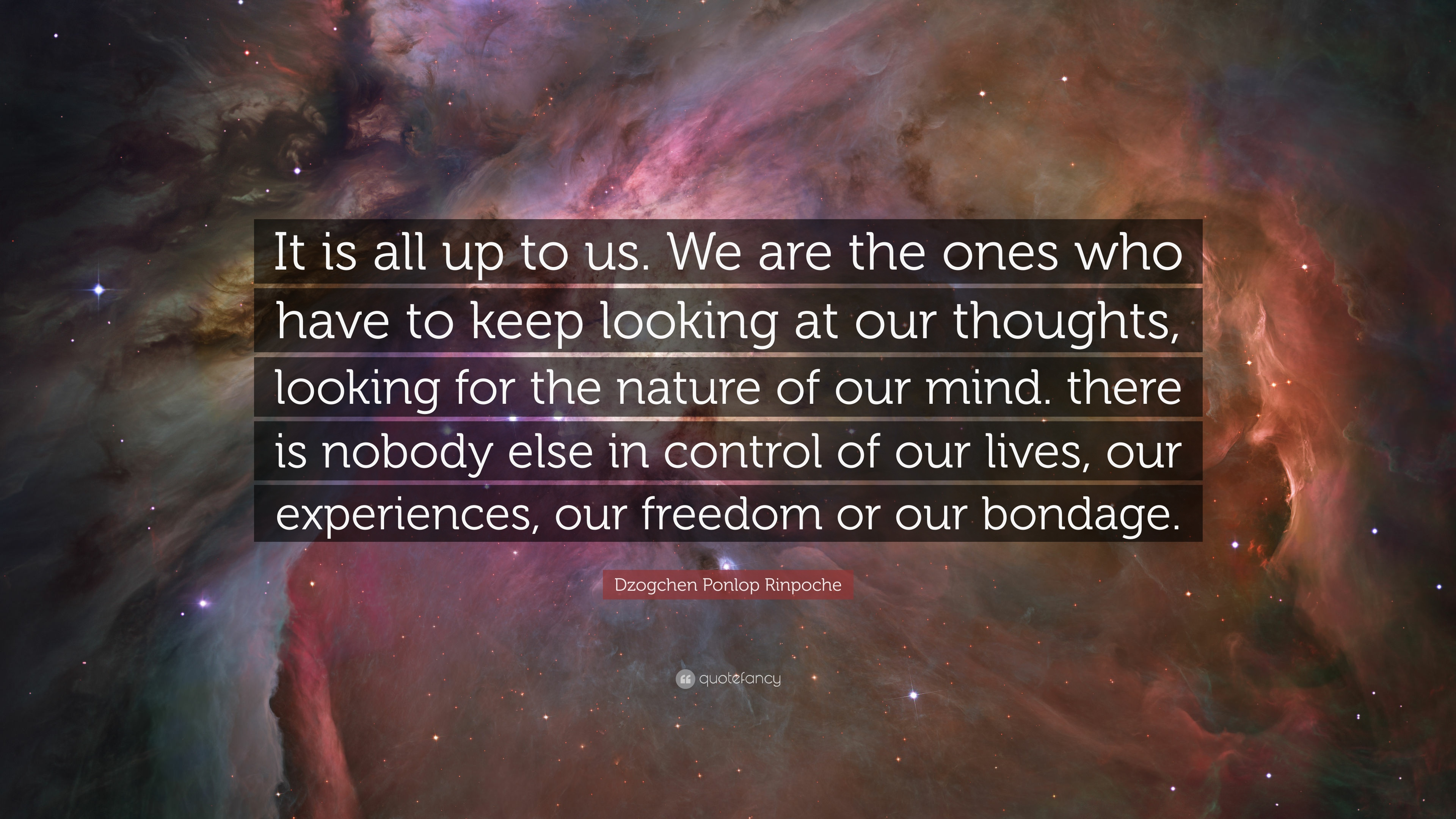 "Dzogchen Ponlop Rinpoche Quote: ""It is all up to us  We are the ones"