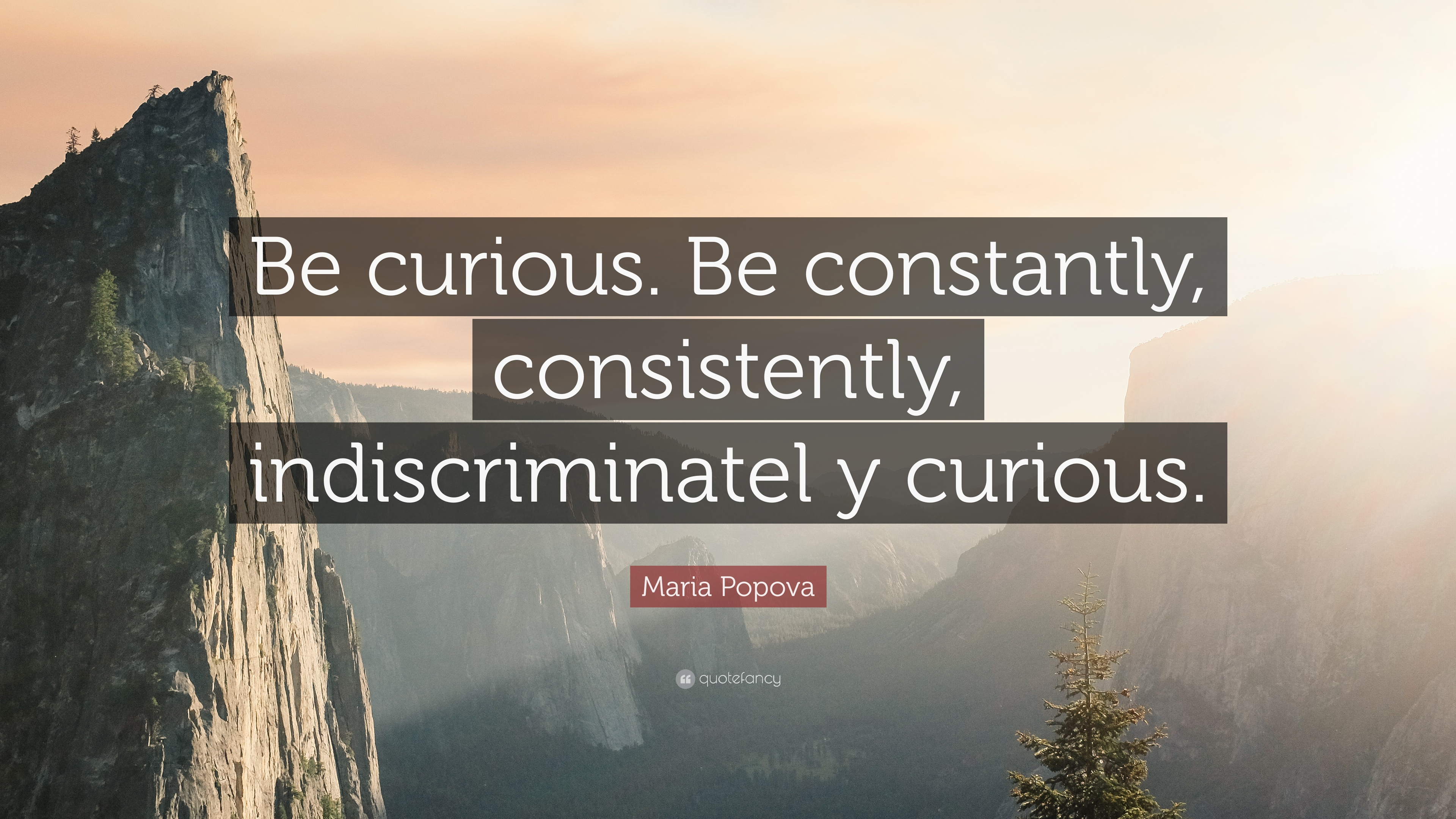 7 Wallpapers Maria Popova Quote Be Curious Constantly Consistently Indiscriminatel Y