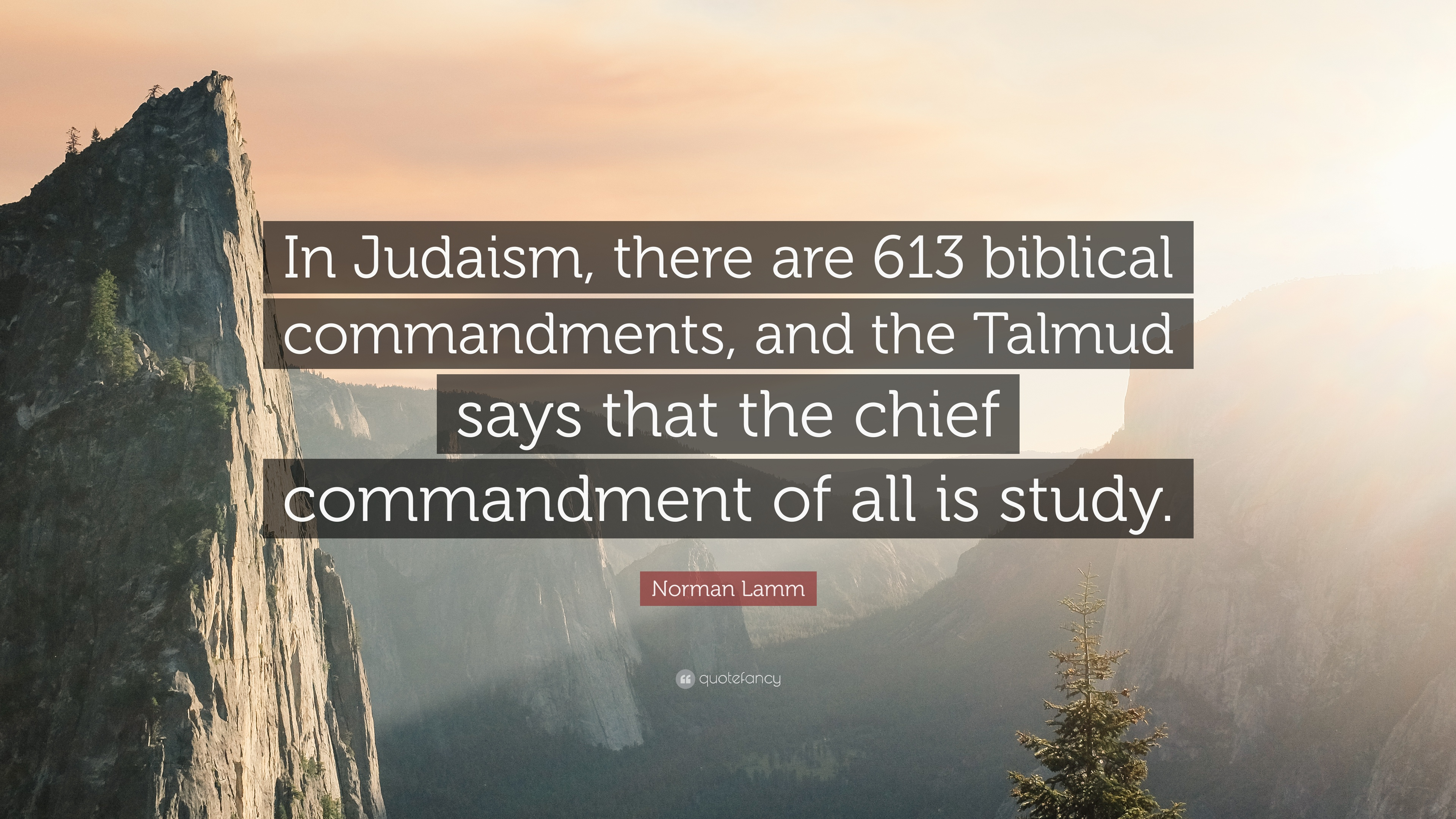 "norman lamm quote: ""in judaism, there are 613 biblical commandments"