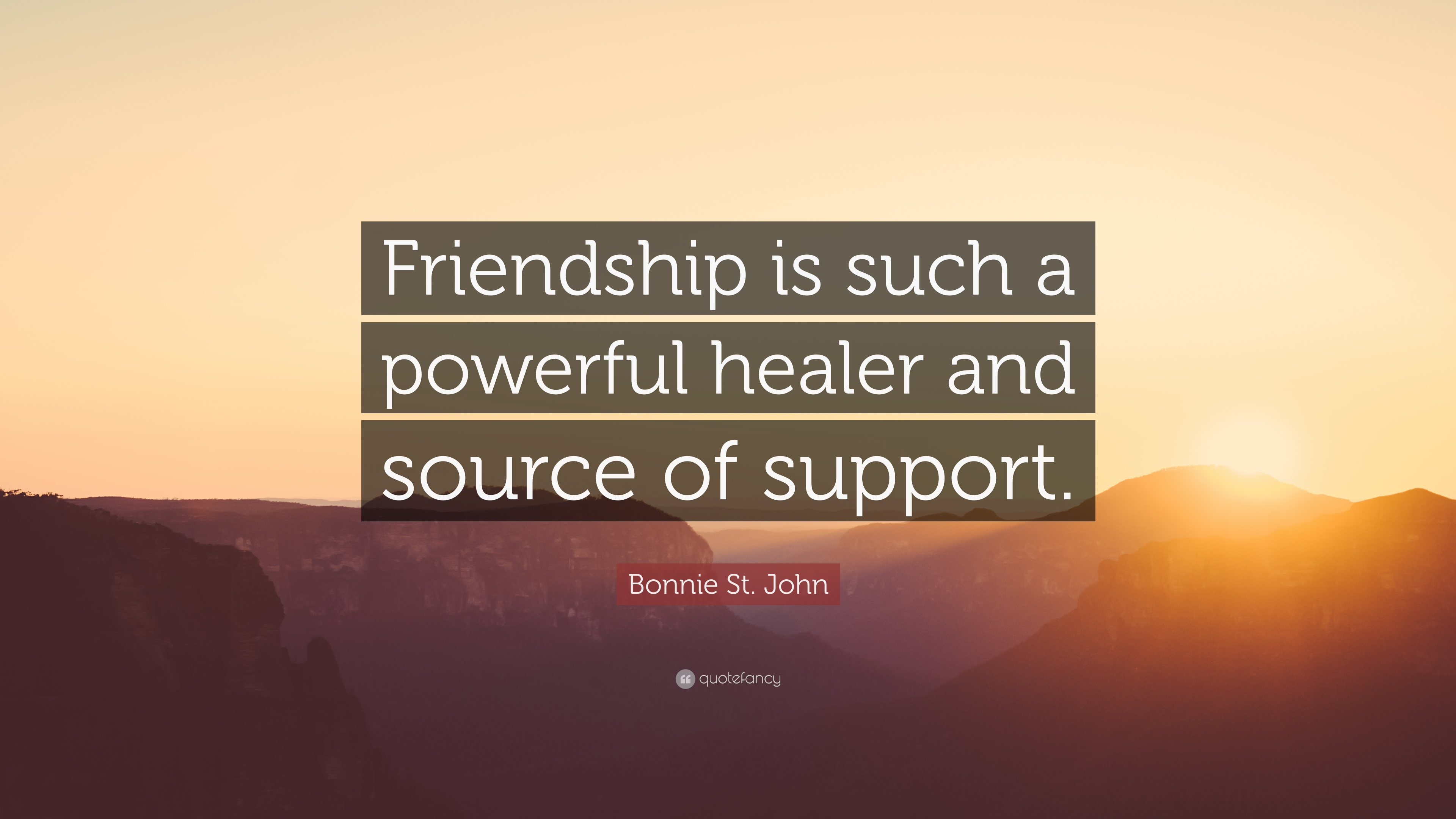Bonnie St. John Quote: U201cFriendship Is Such A Powerful Healer And Source Of