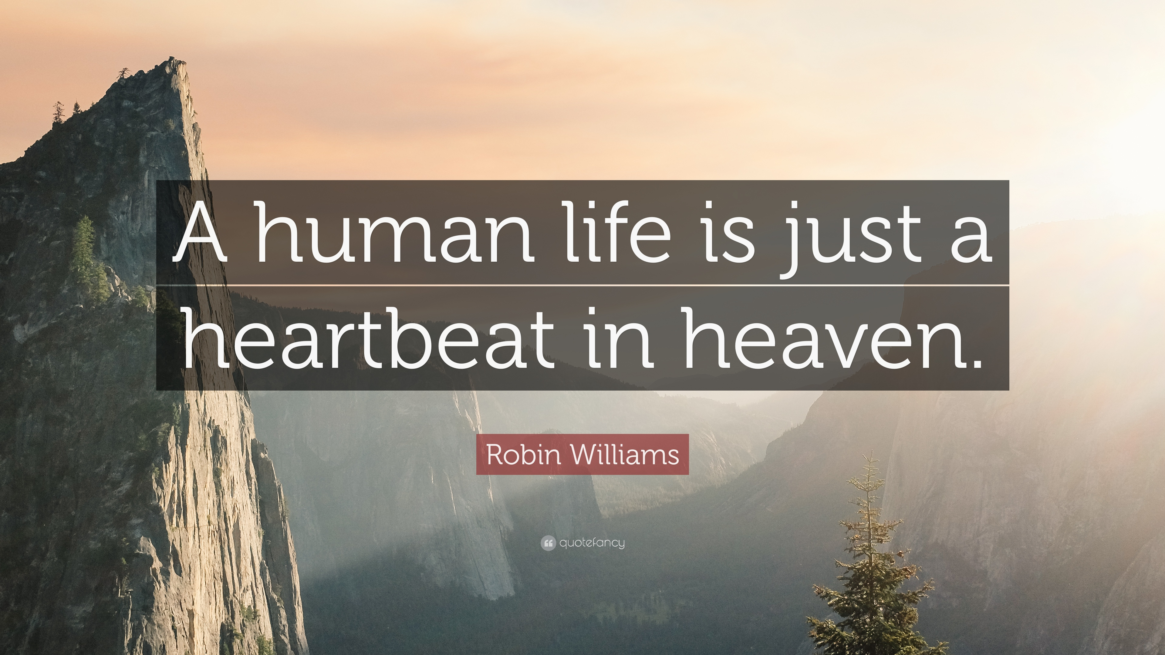 "Robin Williams Quotes About Life Robin Williams Quote ""A Human Life Is Just A Heartbeat In Heaven"