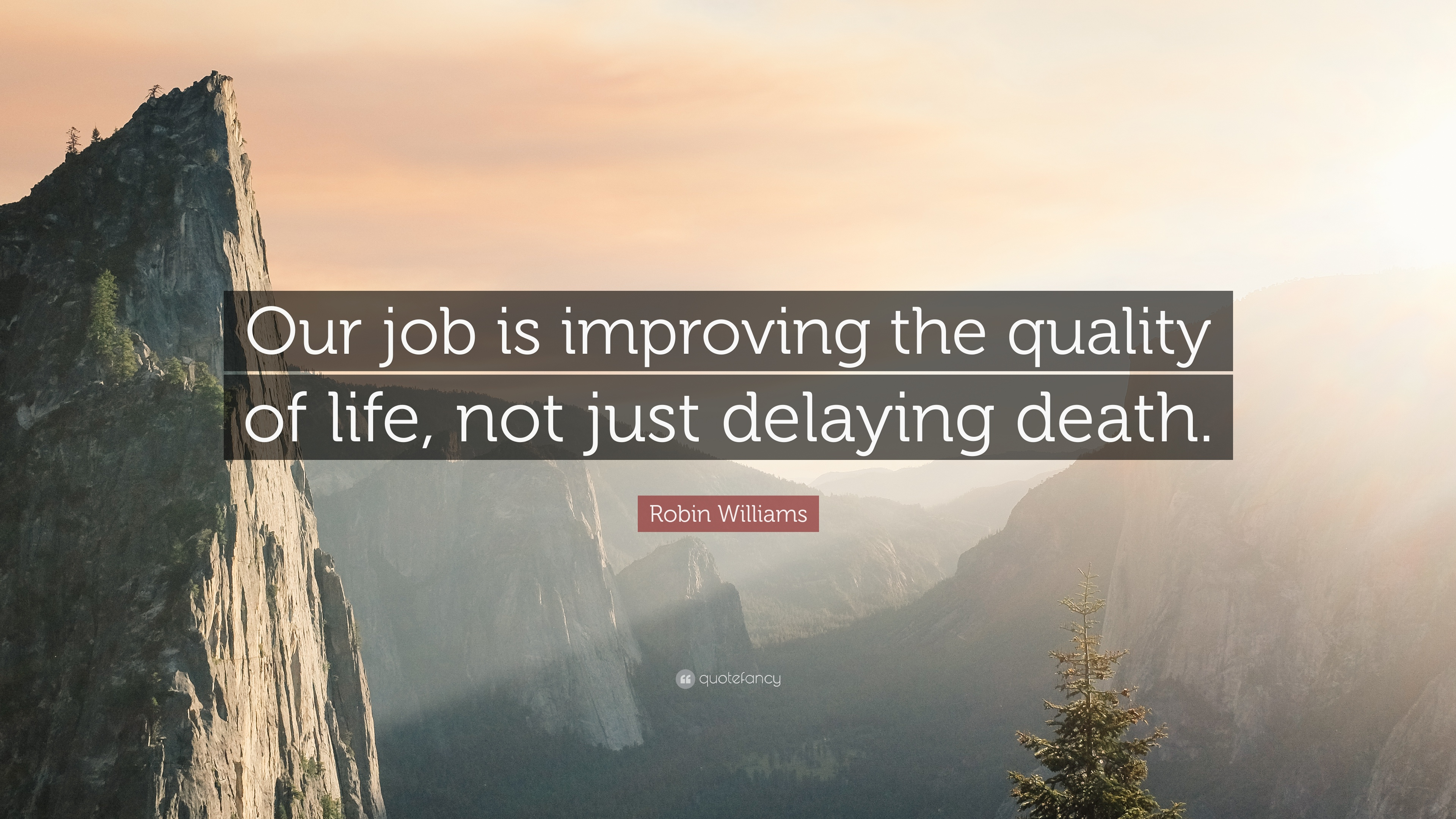 Robin Williams Quote Our Job Is Improving The Quality Of Life Not