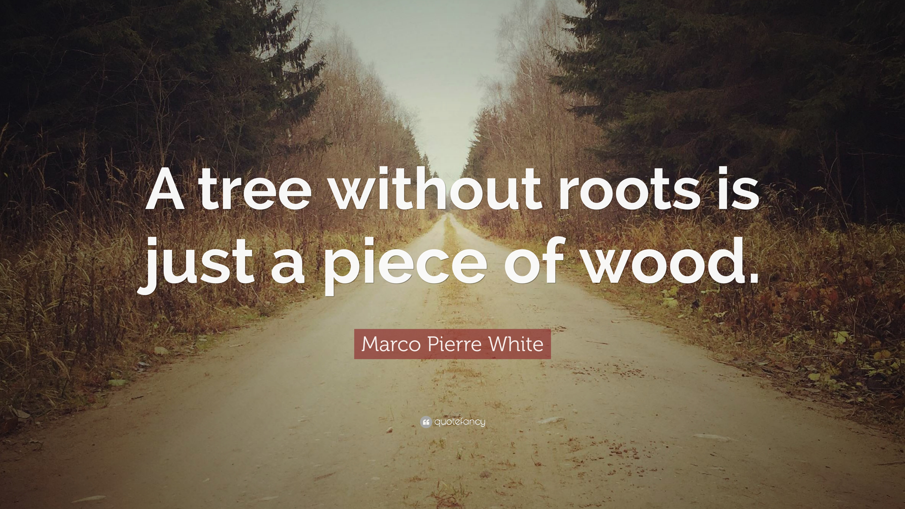 Marco Pierre White Quotes 16 Wallpapers Quotefancy