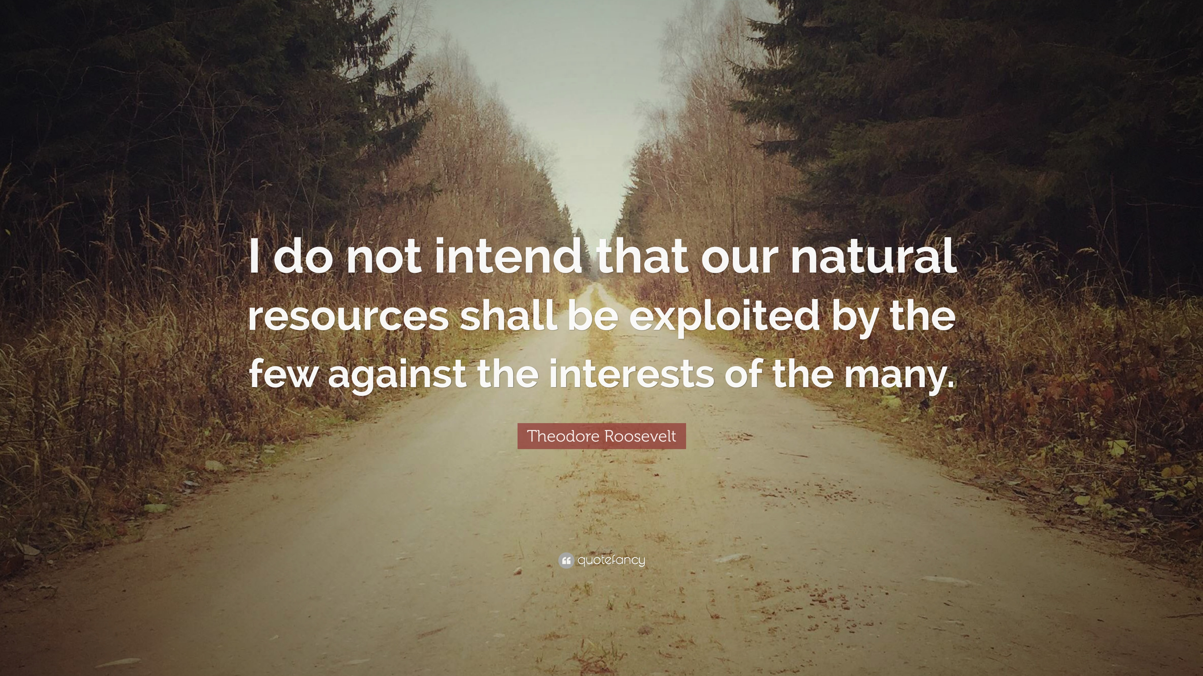 "Theodore Roosevelt Quote: ""I do not intend that our natural"