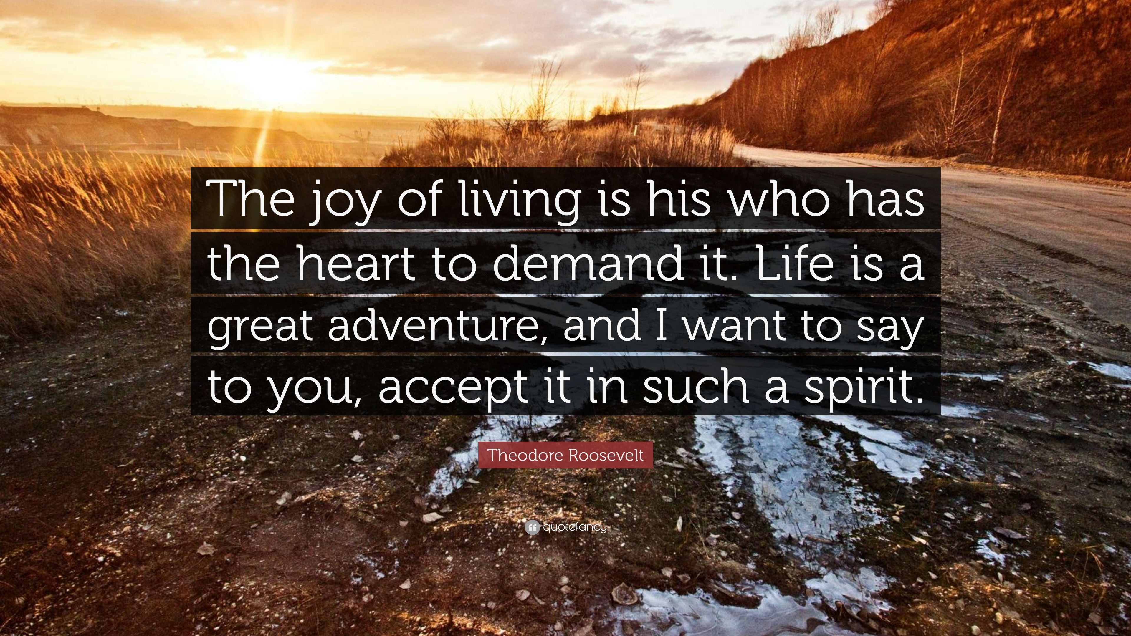 Theodore Roosevelt Quote: U201cThe Joy Of Living Is His Who Has The Heart To