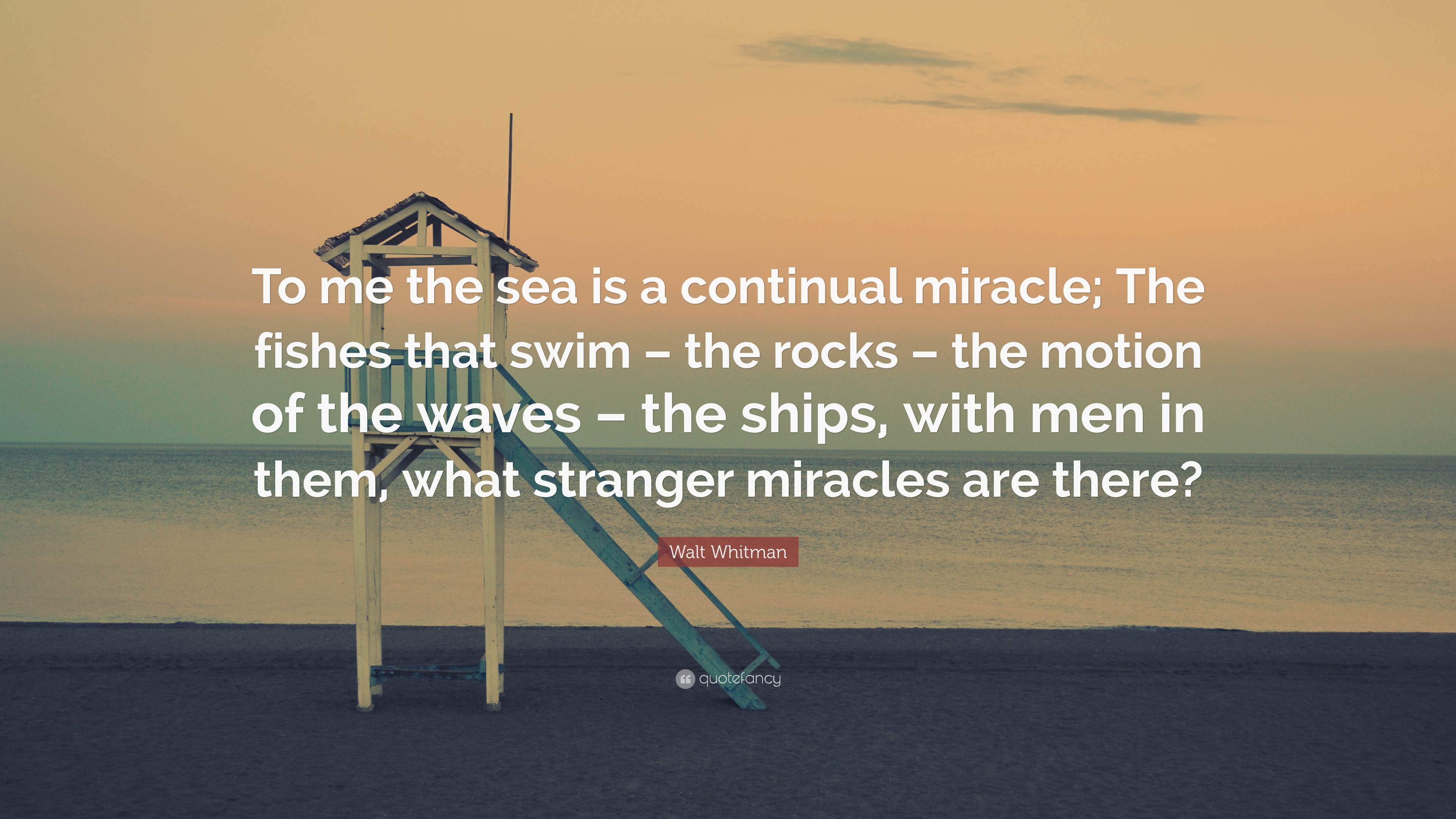 Walt Whitman Quote To Me The Sea Is A Continual Miracle The