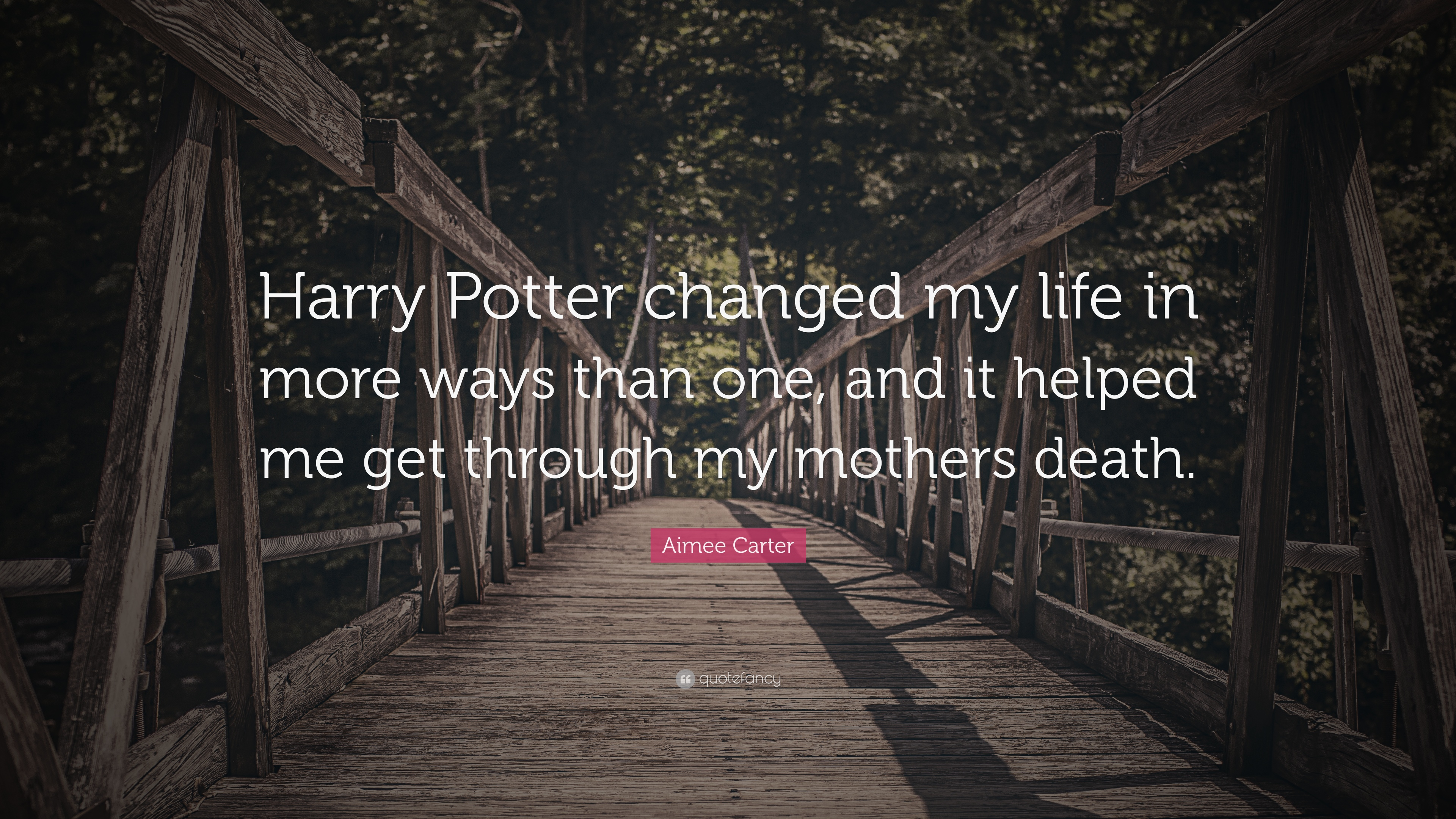 Aimee Carter Quote Harry Potter Changed My Life In More Ways Than
