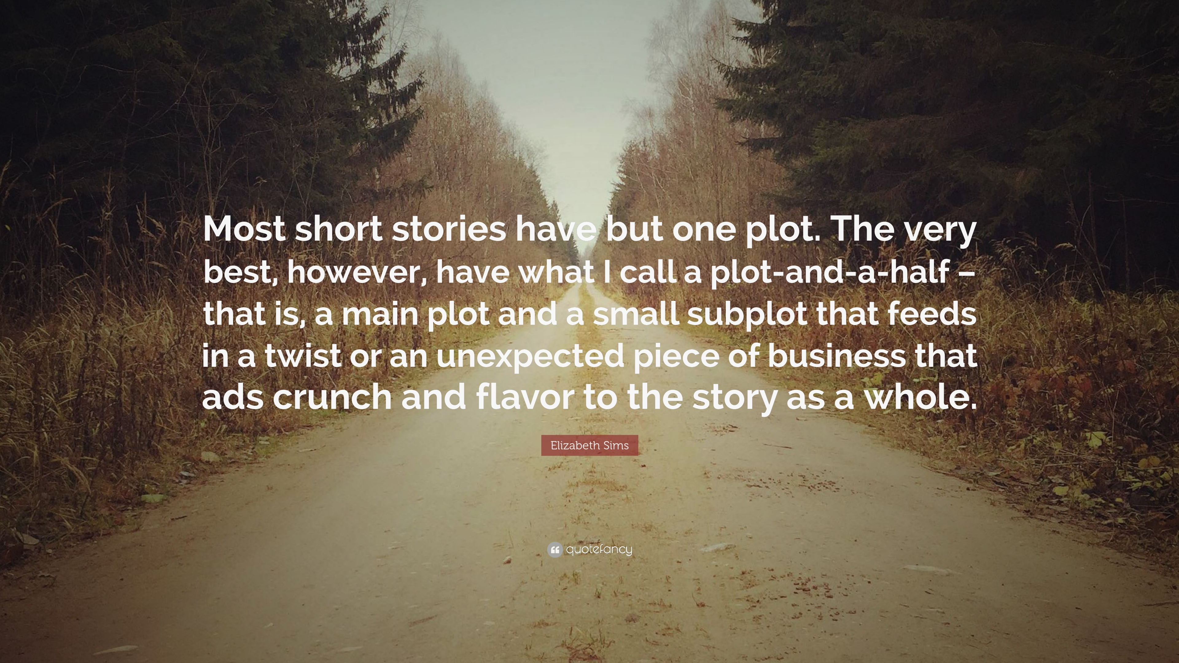 "Elizabeth Sims Quote: ""Most short stories have but one plot  The"