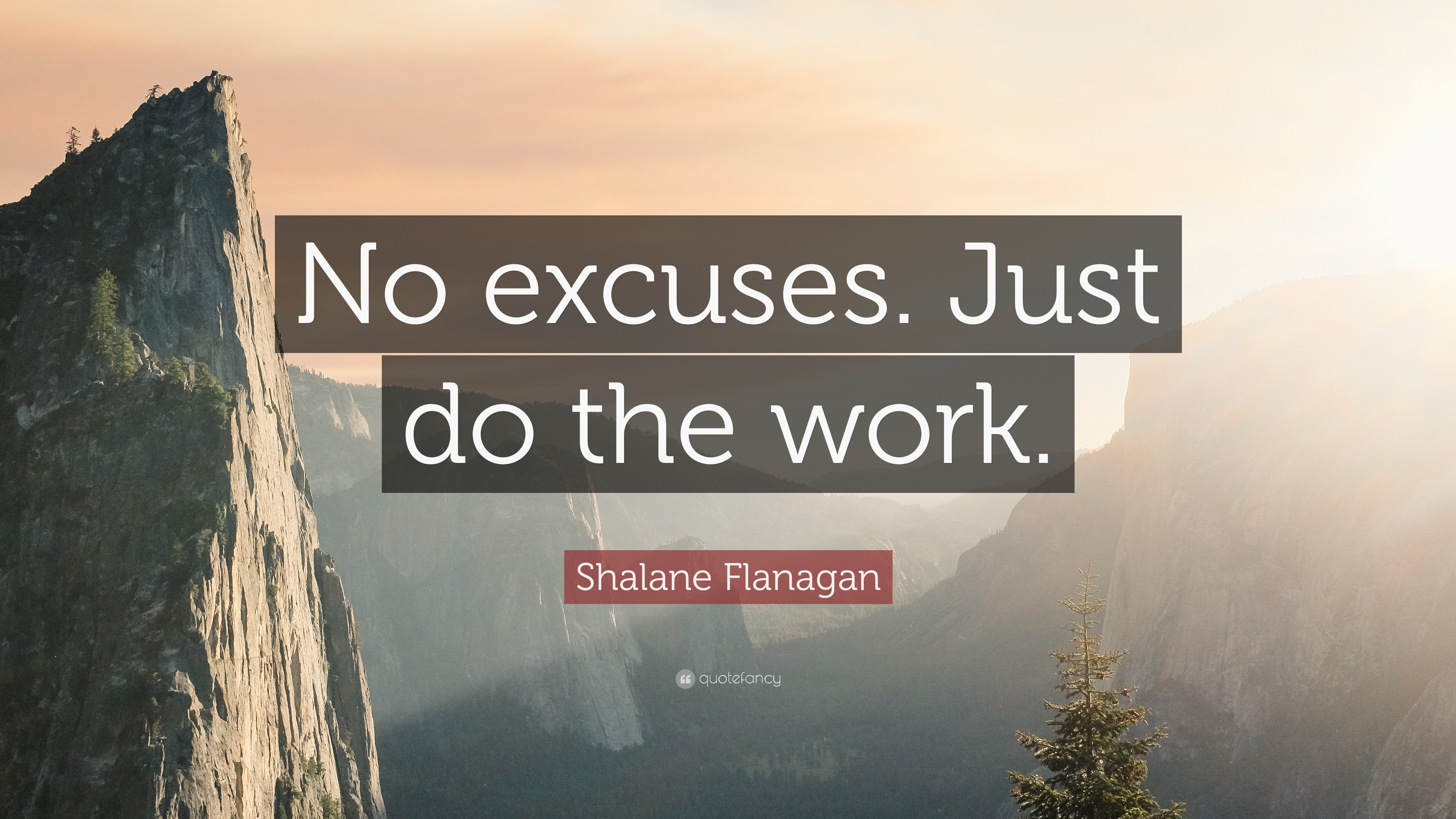 Image result for just do the work quote