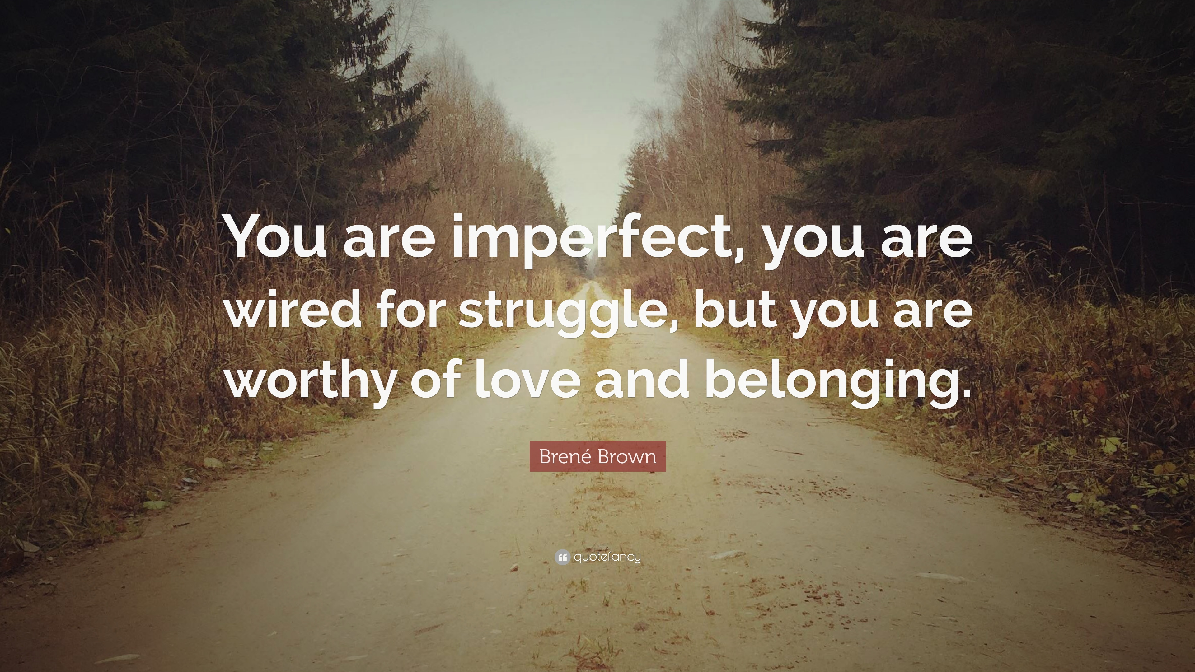 Brené Brown Quote You Are Imperfect You Are Wired For Struggle