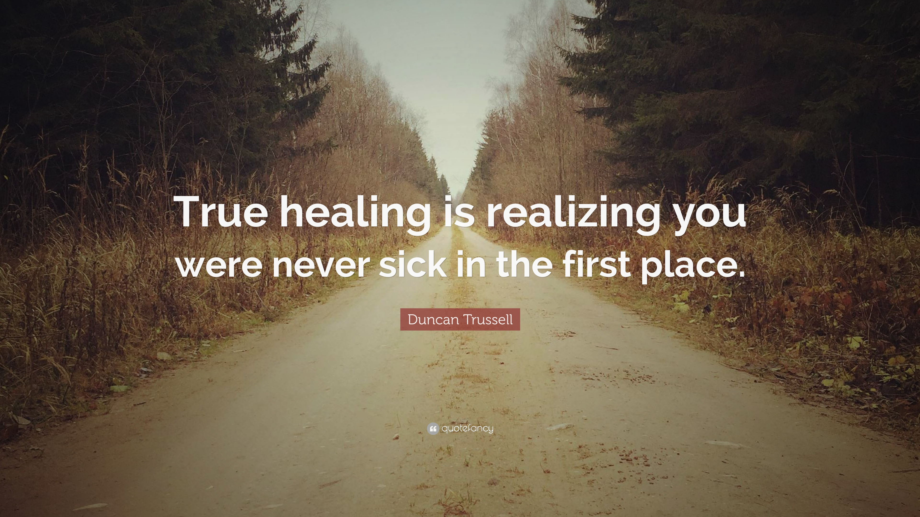 Duncan Trussell Quote True Healing Is Realizing You Were Never