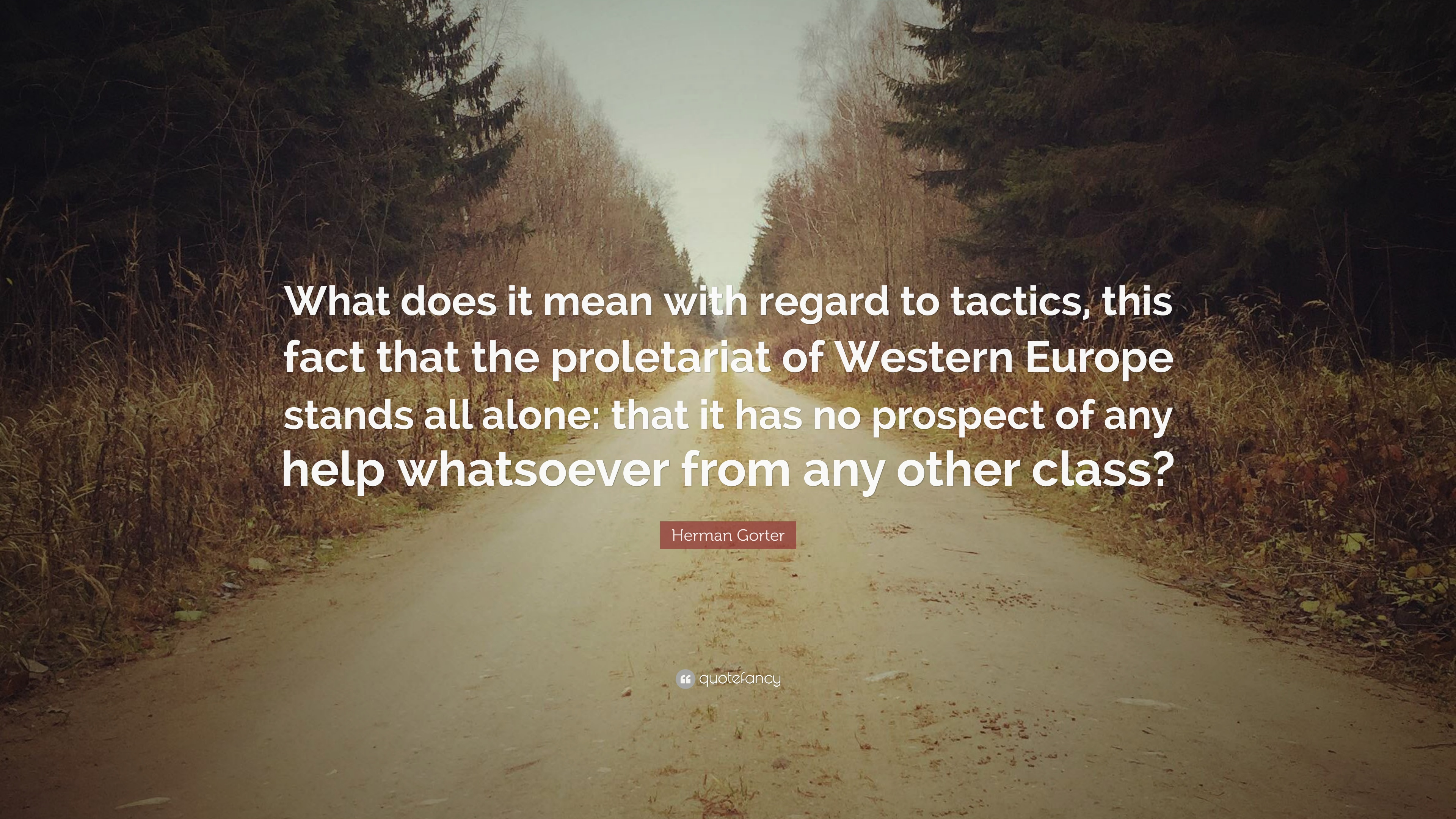"""What Does This Quote Mean Herman Gorter Quote """"What Does It Mean With Regard To Tactics"""