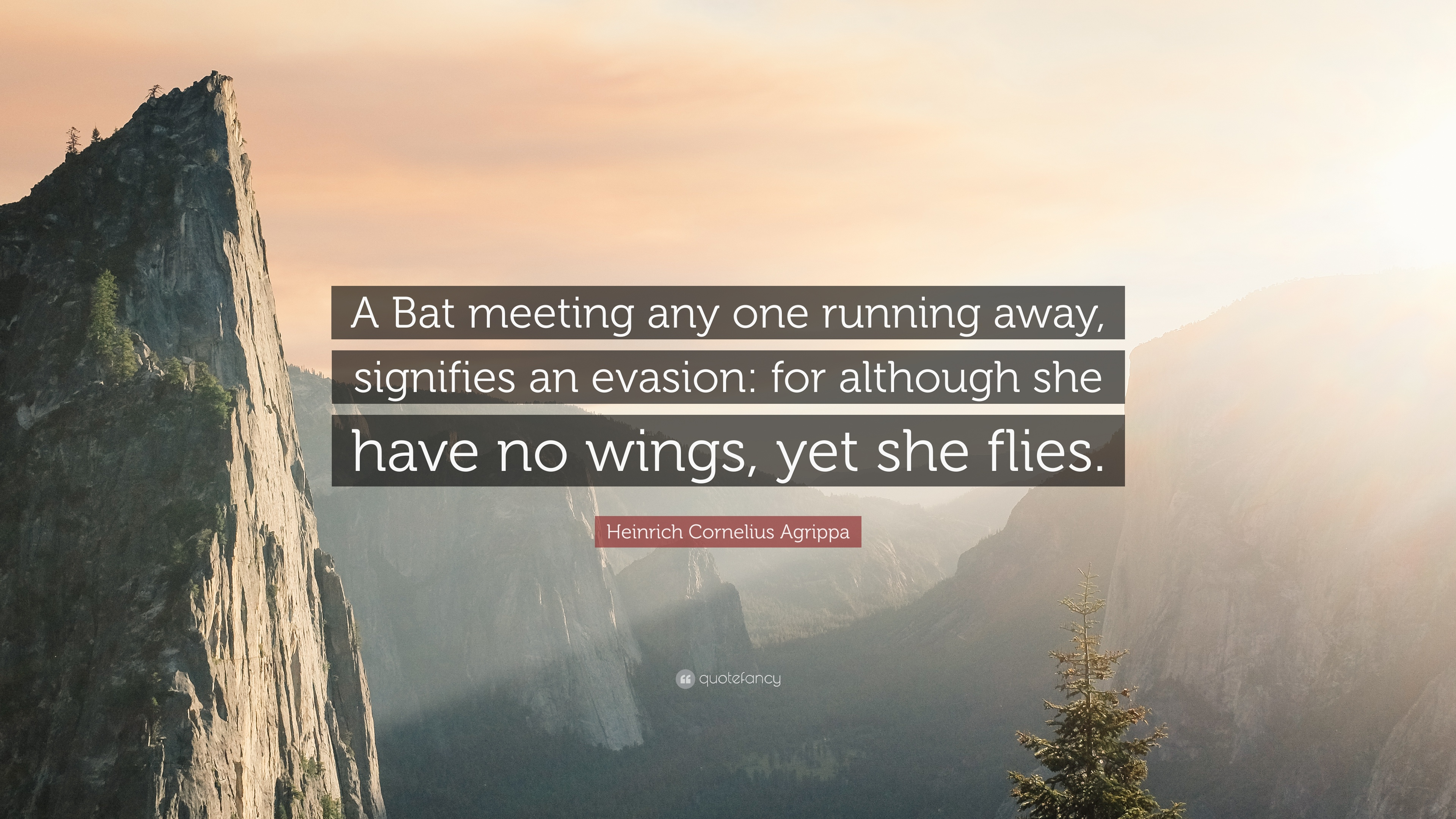 Heinrich Cornelius Agrippa Quote A Bat Meeting Any One Running