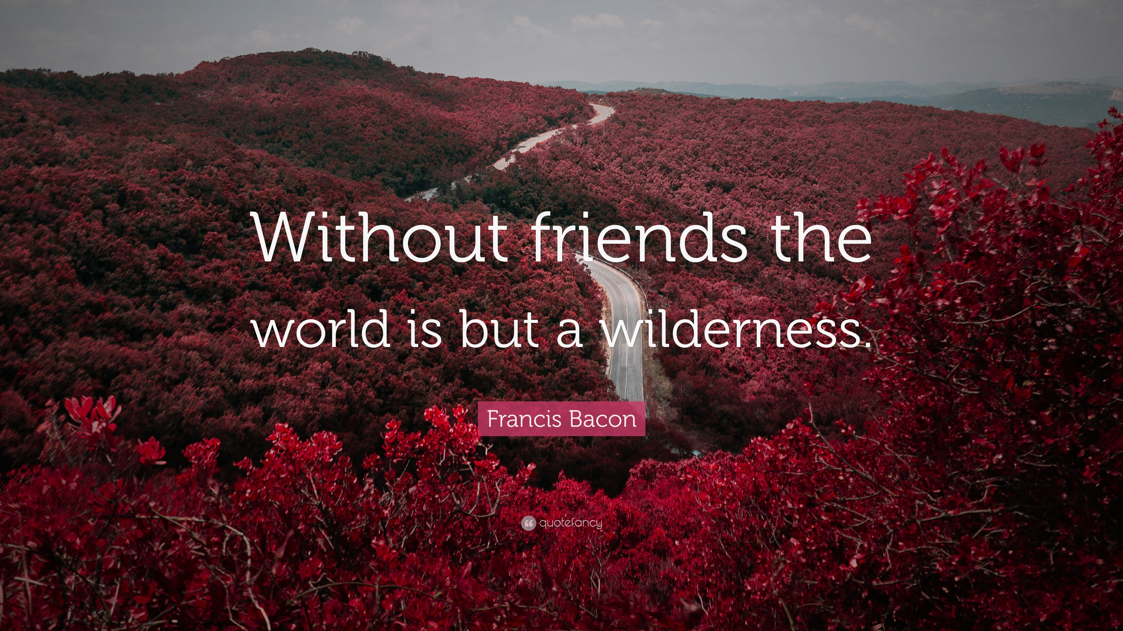 Francis Bacon Quote Without Friends The World Is But A