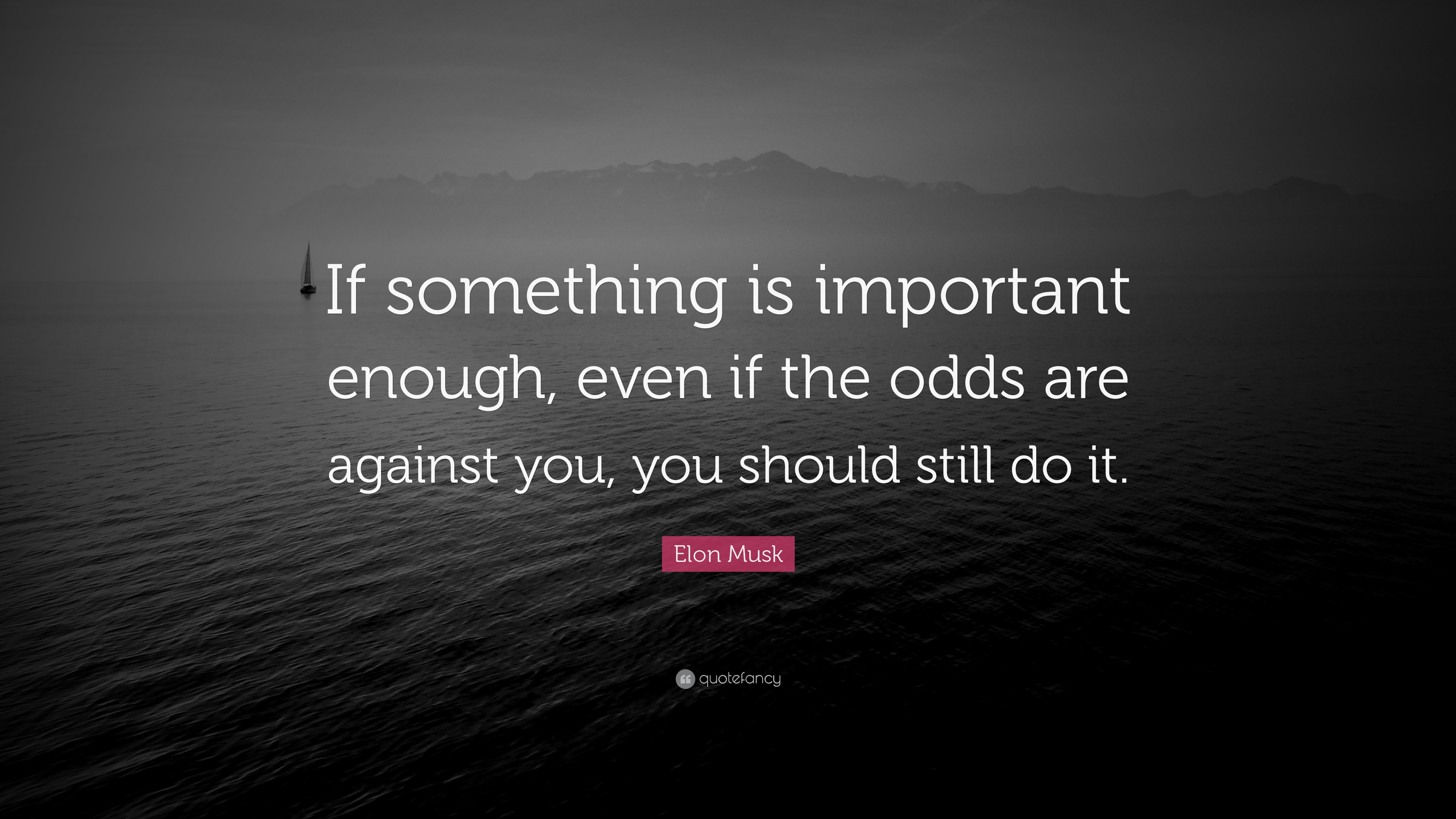 "Important Quotes: Elon Musk Quote: ""If Something Is Important Enough, Even"