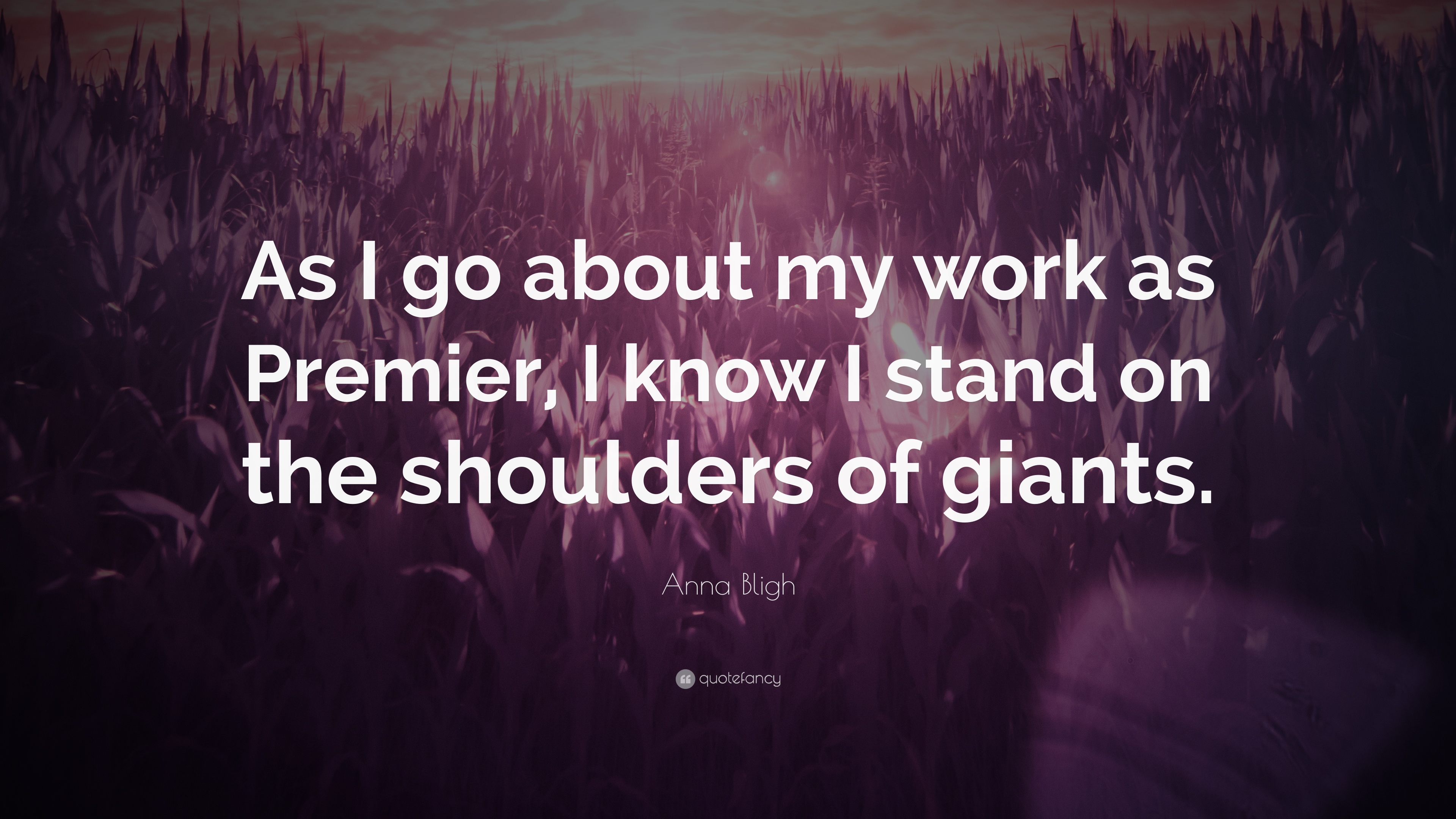 Anna Bligh Quote As I Go About My Work As Premier I Know I Stand