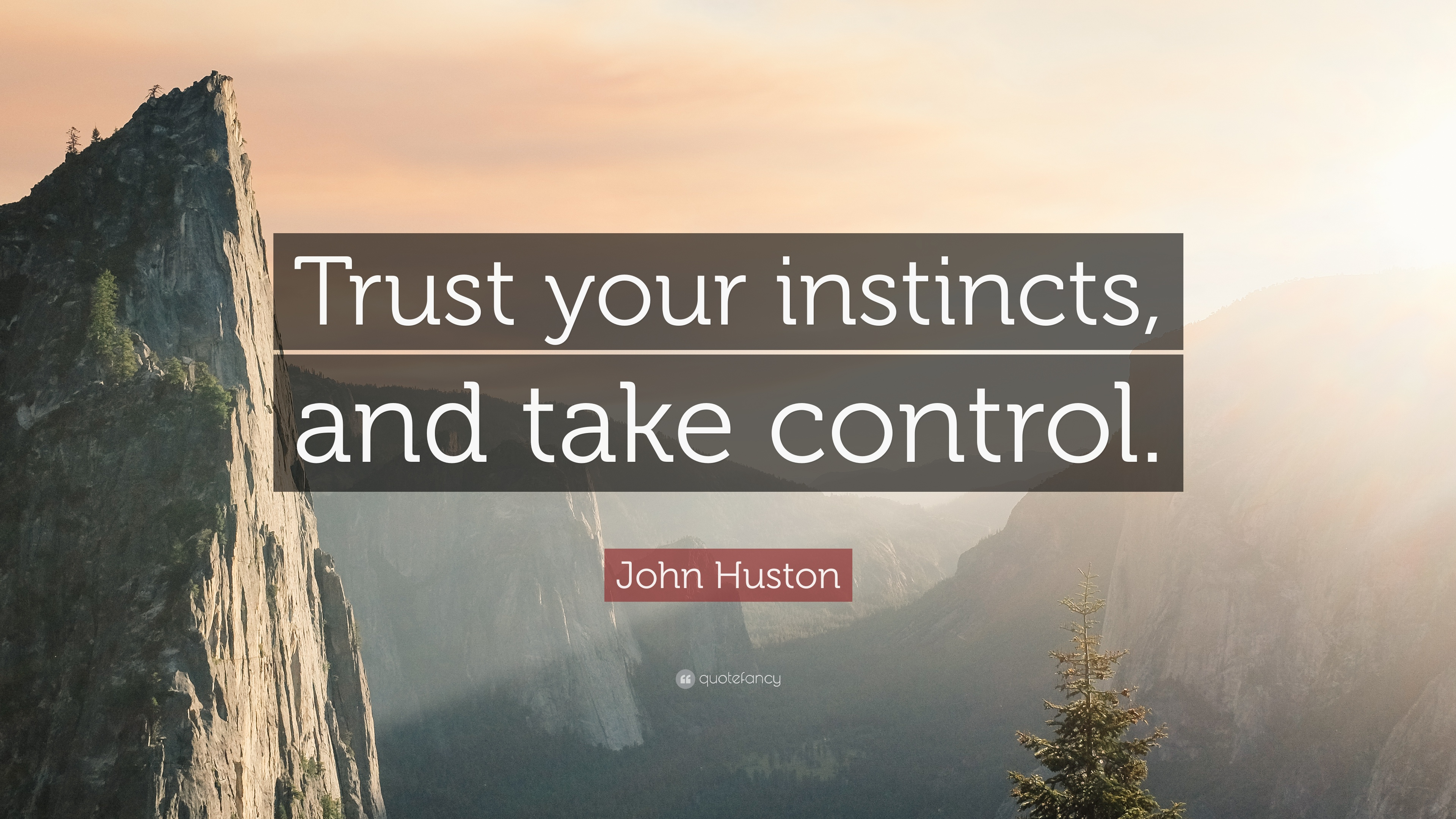John Huston Quote Trust Your Instincts And Take Control 9