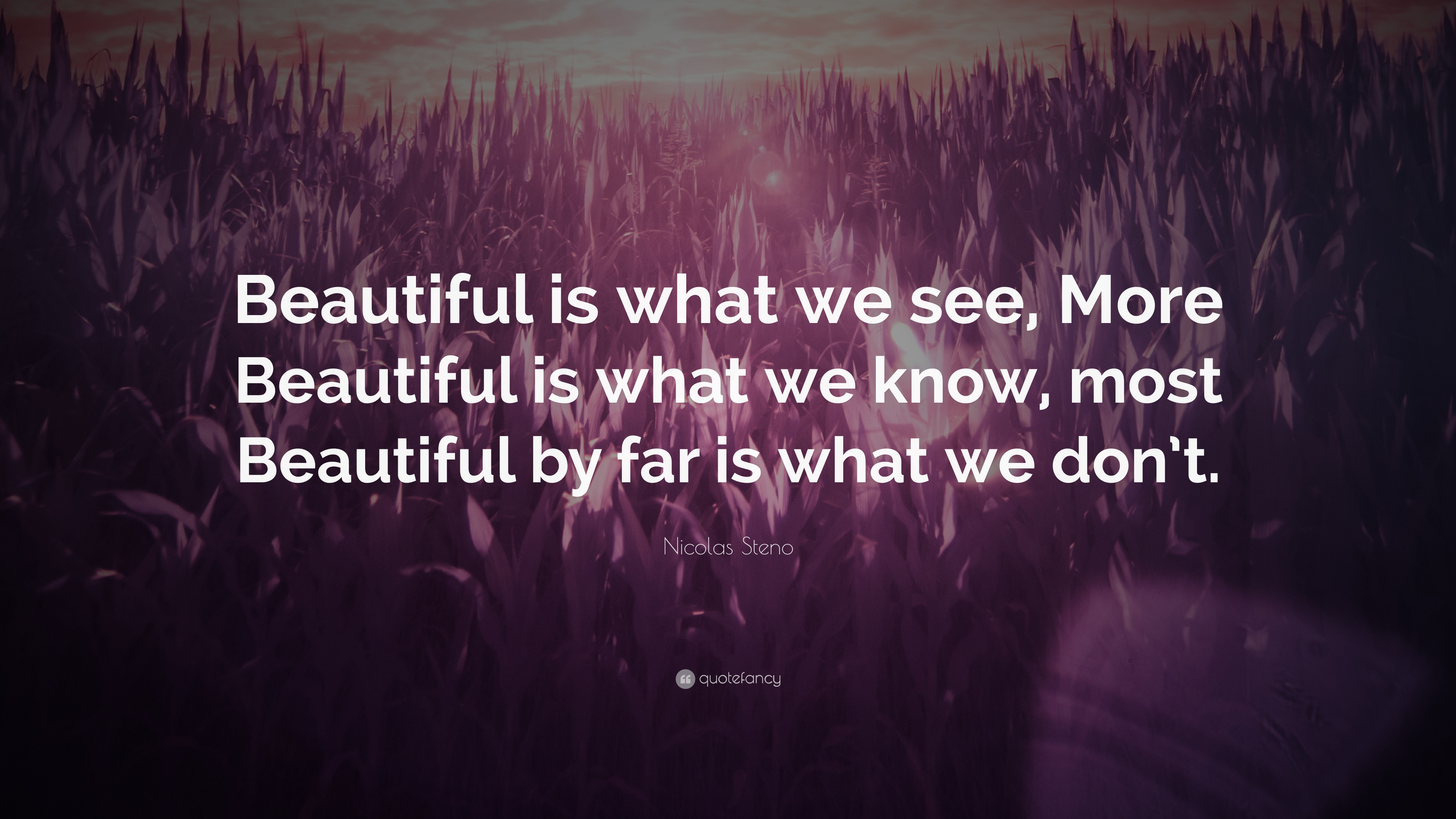 """We Mock What We Don T Understand Quote: Nicolas Steno Quote: """"Beautiful Is What We See, More"""
