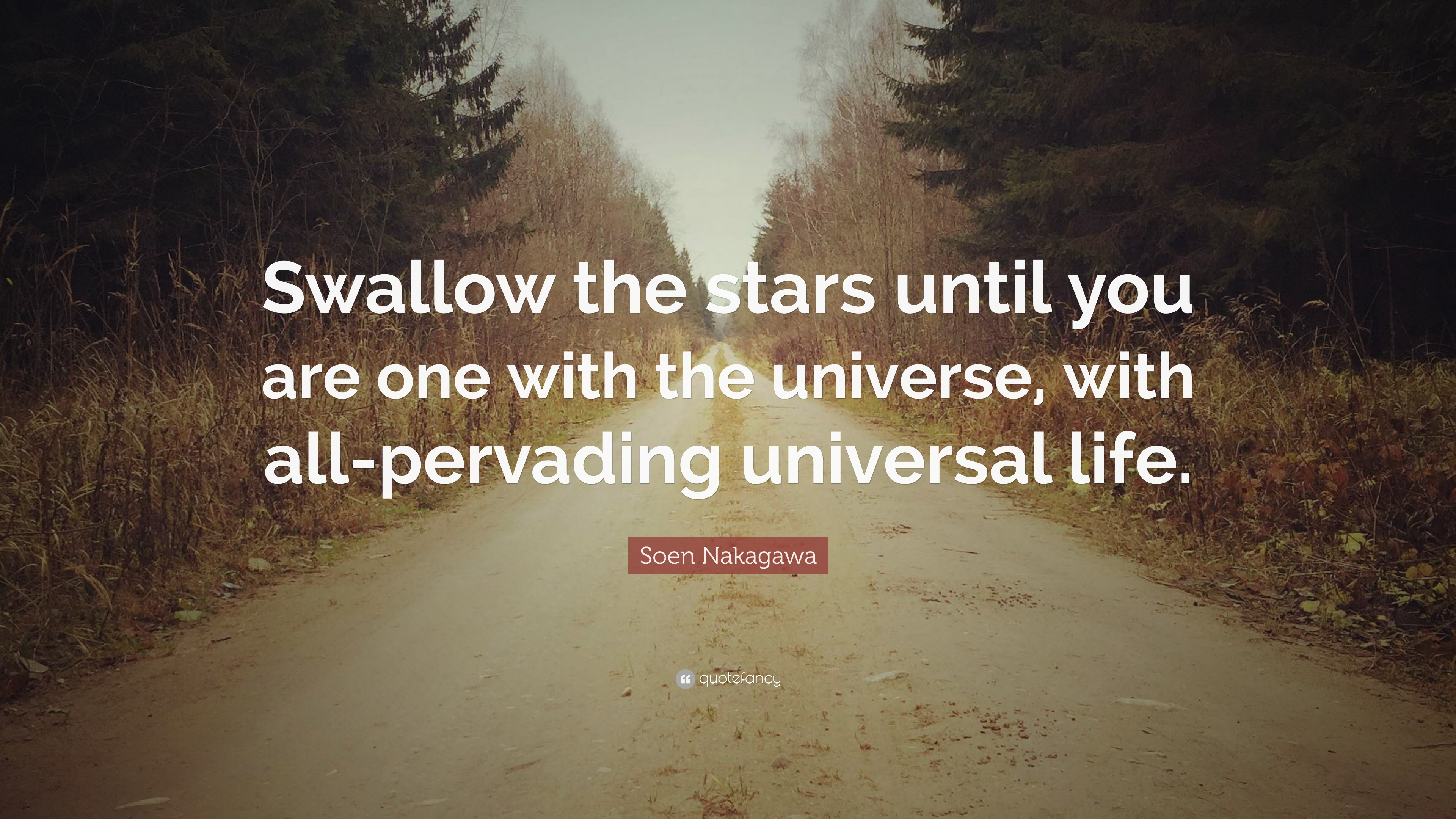 "Universal Life Quotes Soen Nakagawa Quote ""Swallow The Stars Until You Are One With The"