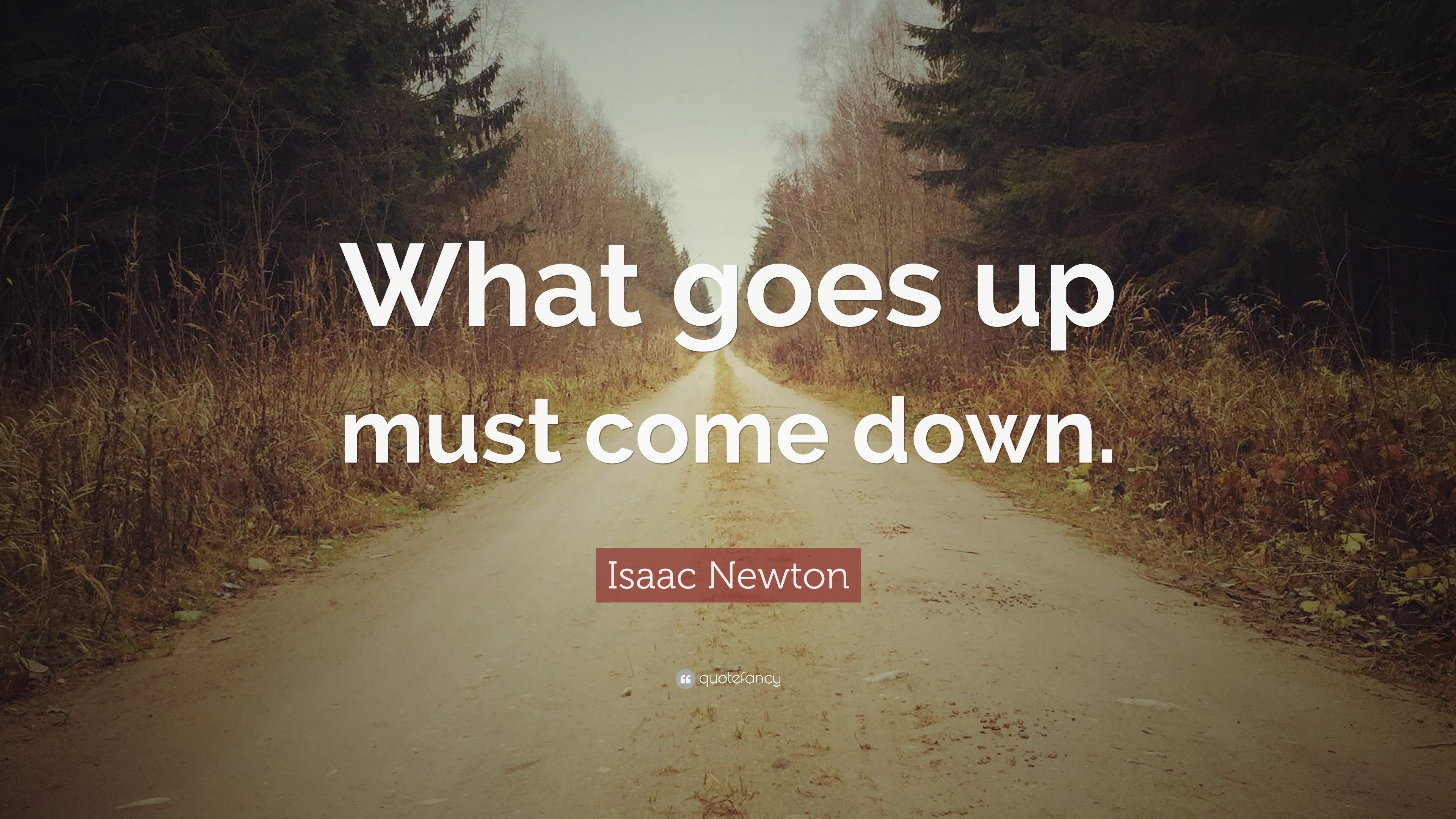 what goes up must come down But what goes up, the authors tell us, must eventually come down  episodes  that come close are taiwan and south korea, which managed.