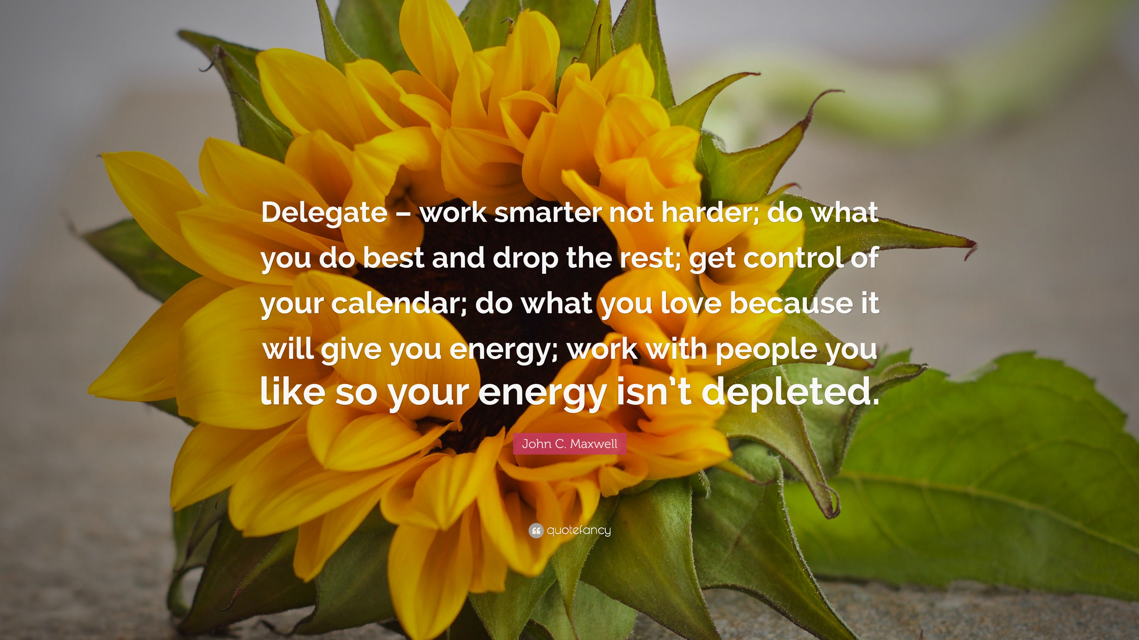 John C Maxwell Quote Delegate Work Smarter Not Harder Do What