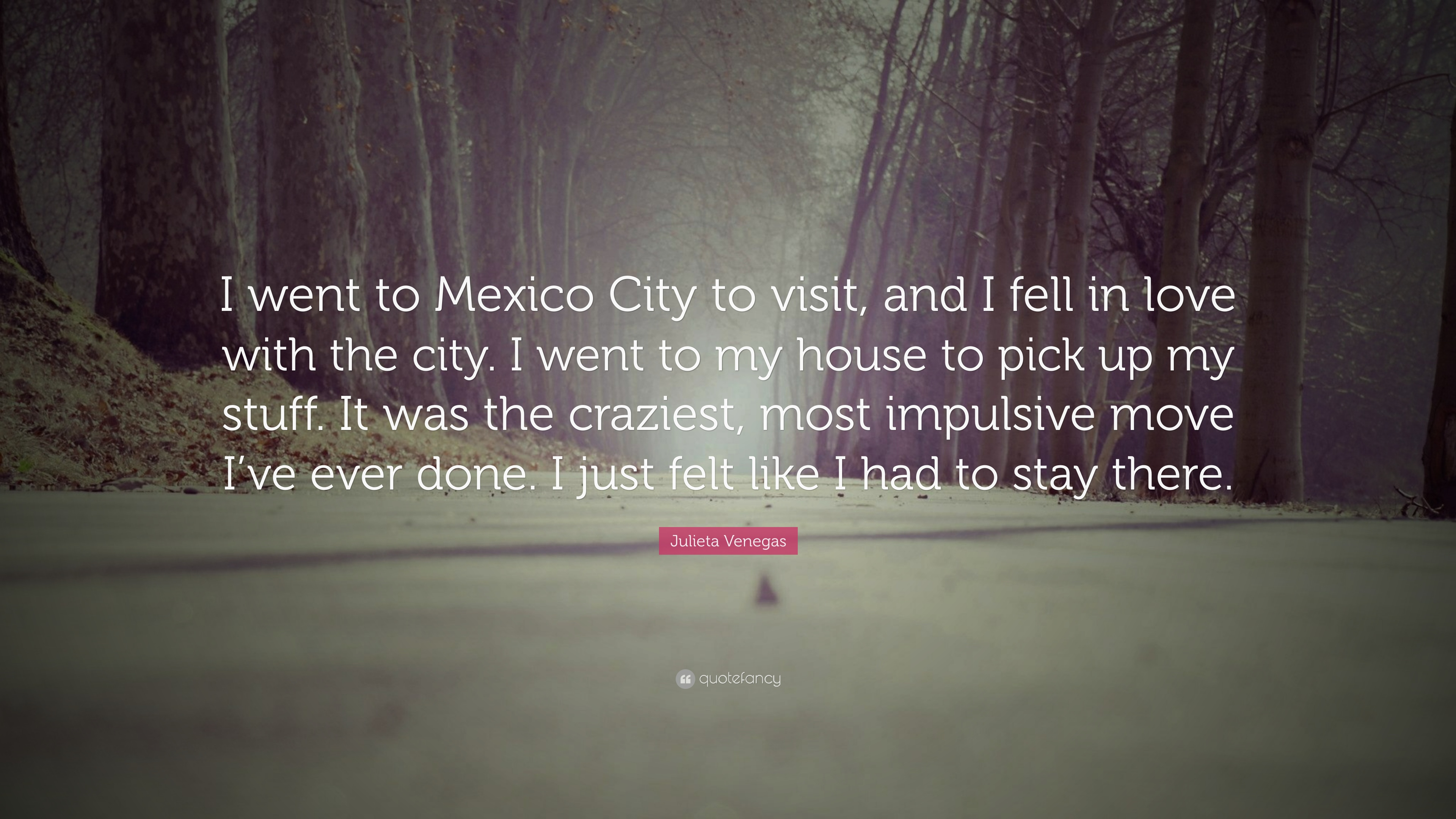 Julieta Venegas Quote I Went To Mexico City To Visit And I Fell