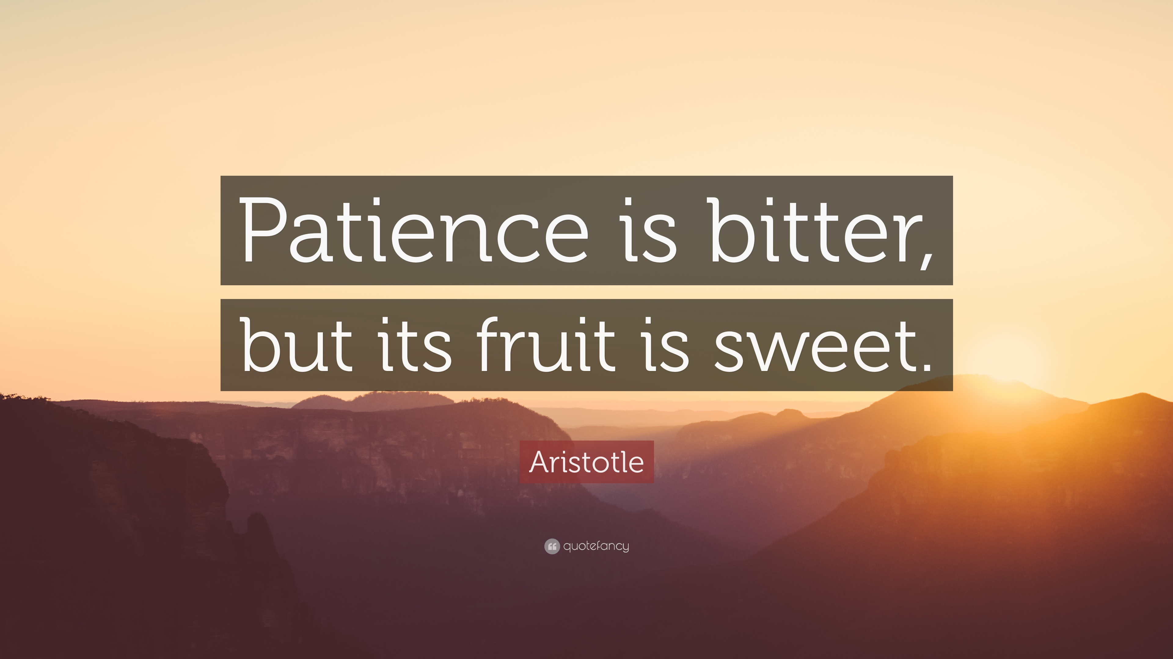 "Inspirational Quotes Aristotle By Ibbds: Aristotle Quote: ""Patience Is Bitter, But Its Fruit Is"