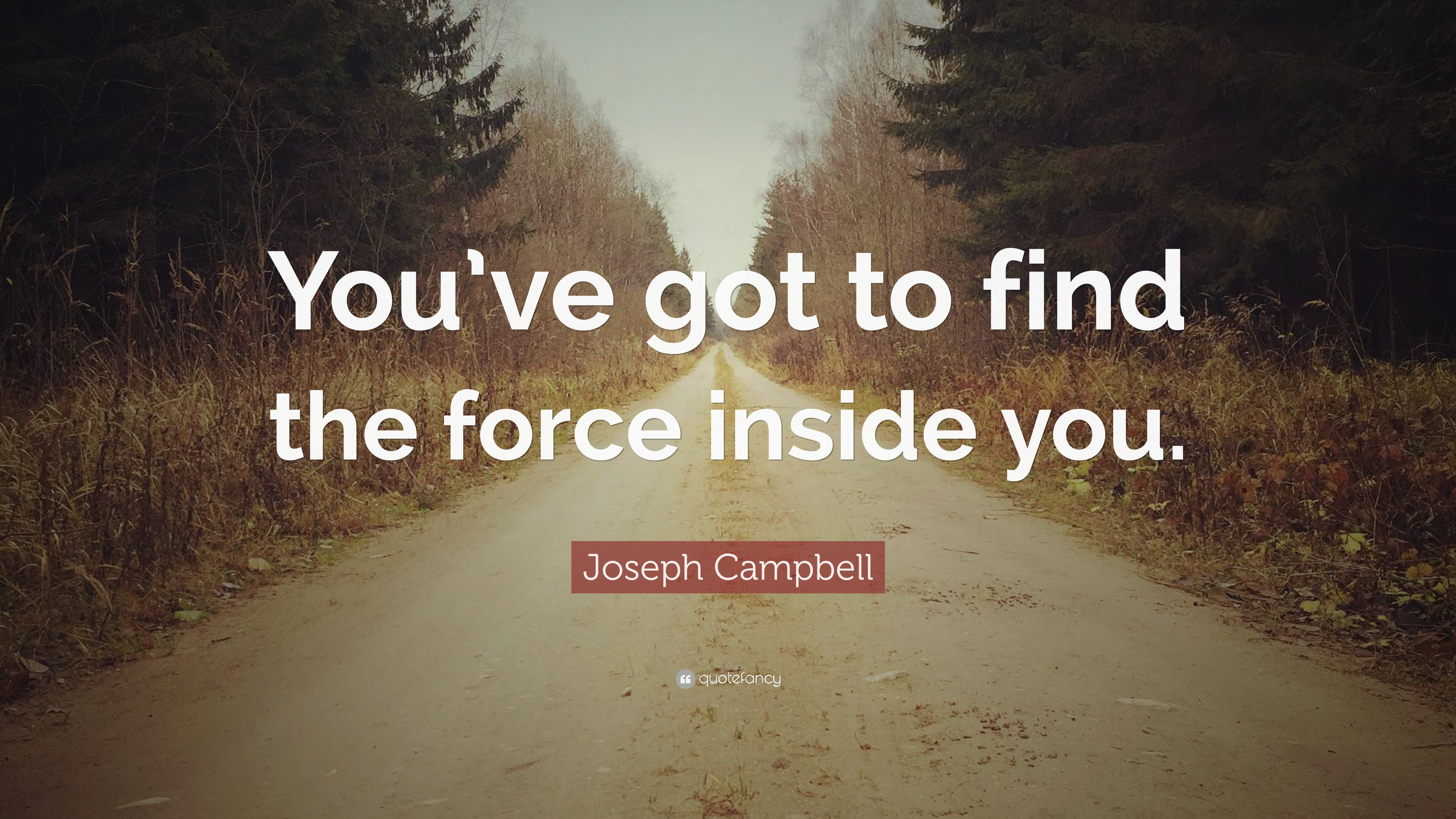 """Joseph Campbell Quote: """"You've Got To Find The Force"""