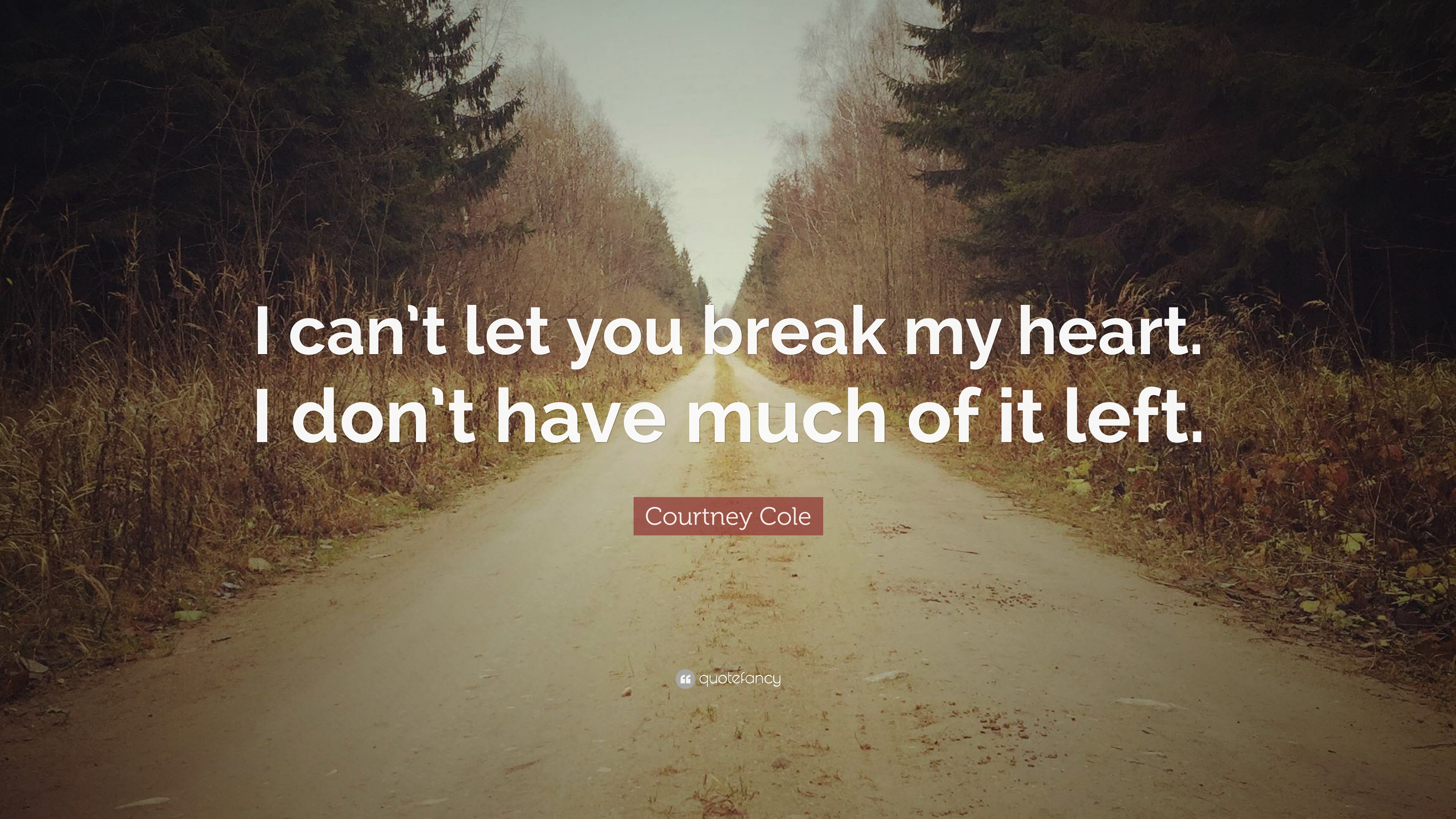 "Courtney Cole Quote: ""I can\'t let you break my heart. I don ..."