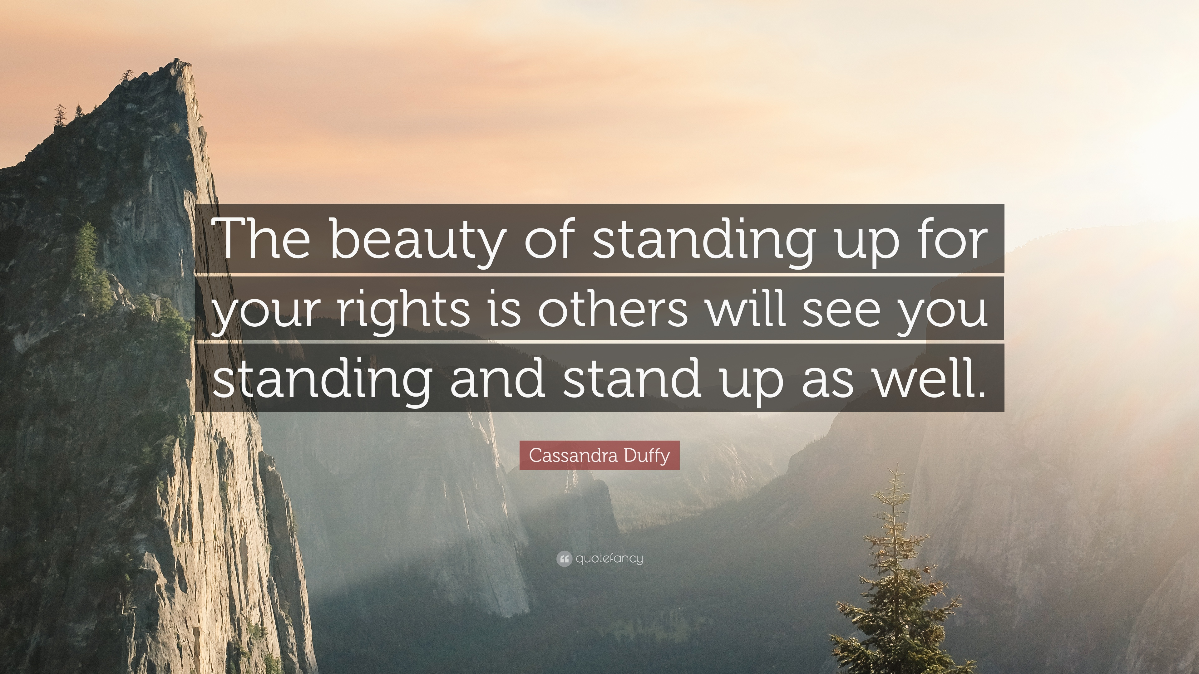Cassandra Duffy Quote The Beauty Of Standing Up For Your Rights Is