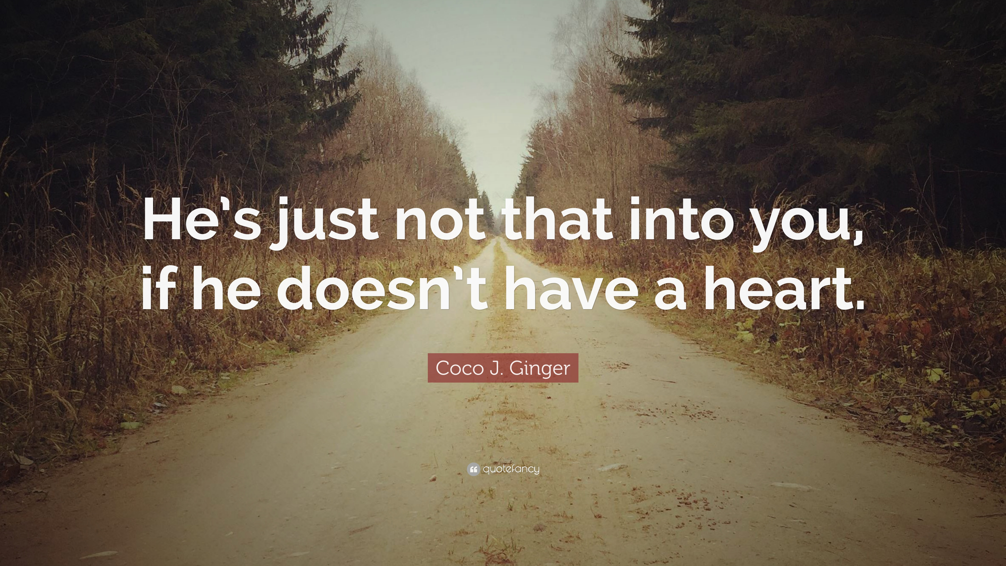 """Hes Just Not That Into You Quotes Image Quotes At: Coco J. Ginger Quote: """"He's Just Not That Into You, If He"""