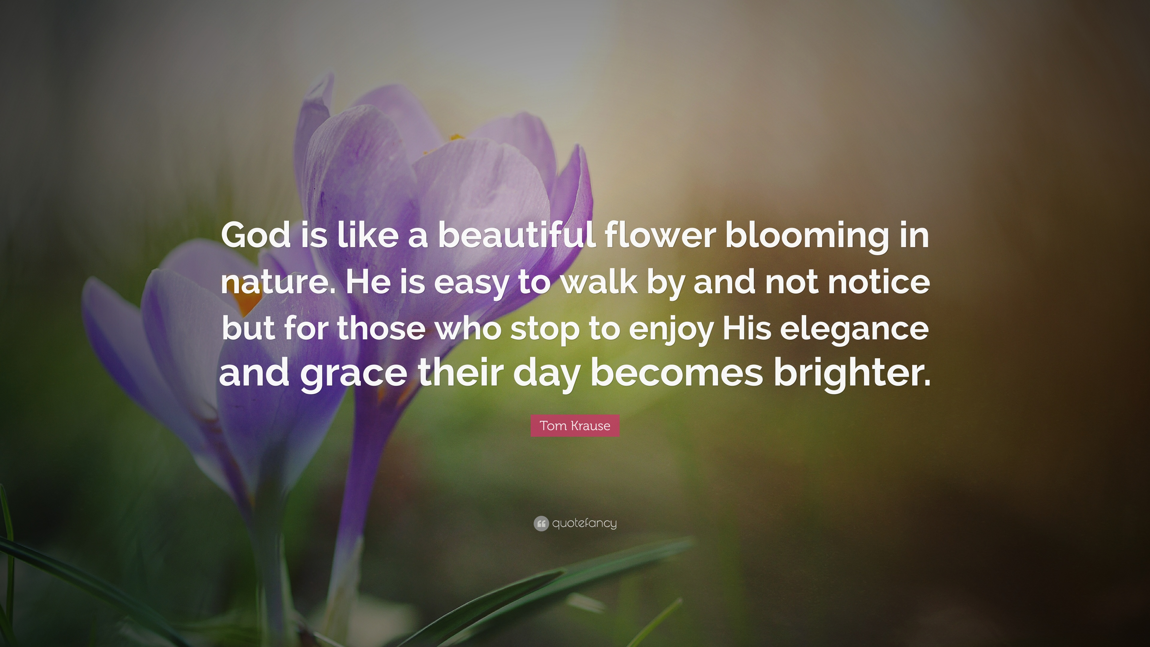 Tom Krause Quote God Is Like A Beautiful Flower Blooming In Nature