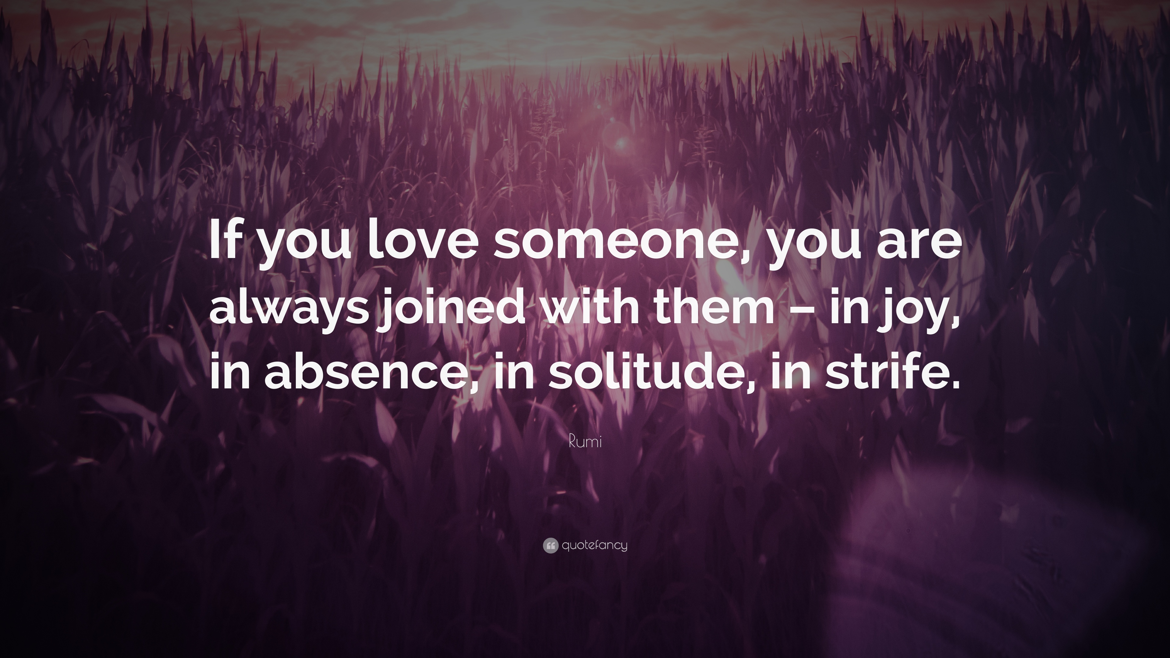 """Rumi Quote: """"If You Love Someone, You Are Always Joined"""