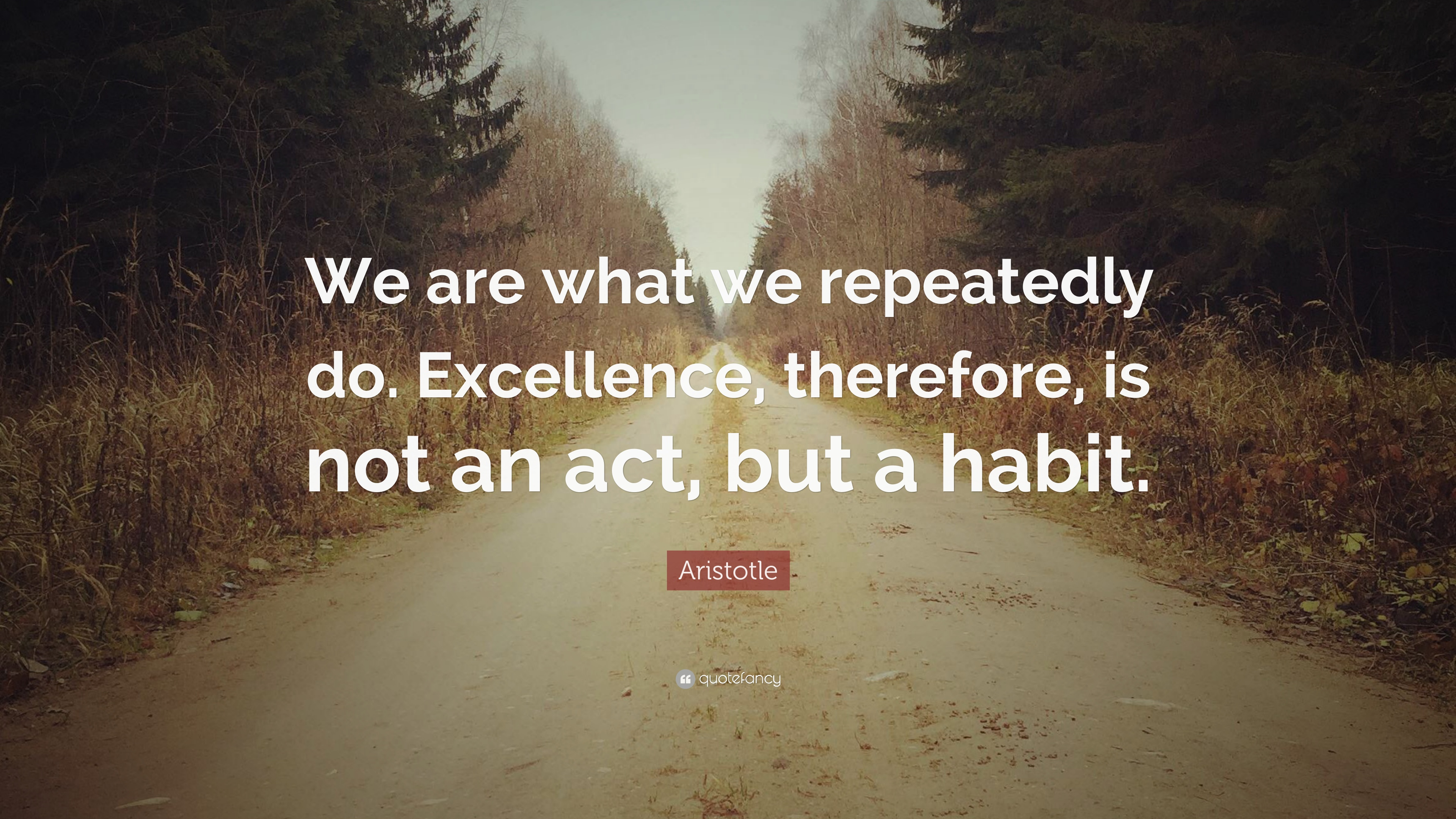 "Aristotle Quote: Aristotle Quote: ""We Are What We Repeatedly Do. Excellence"