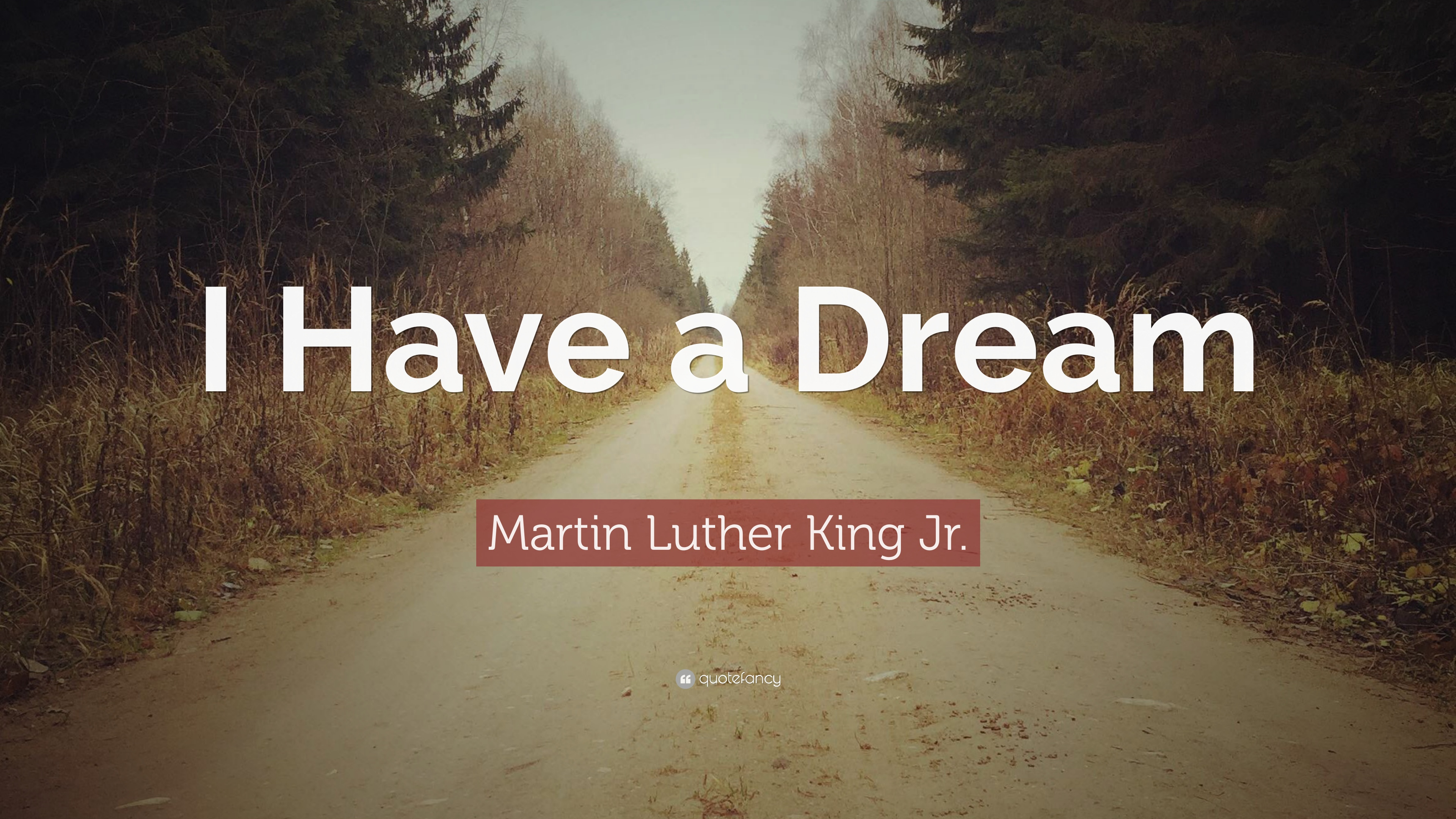 martin luther king jr quote i have a dream 17