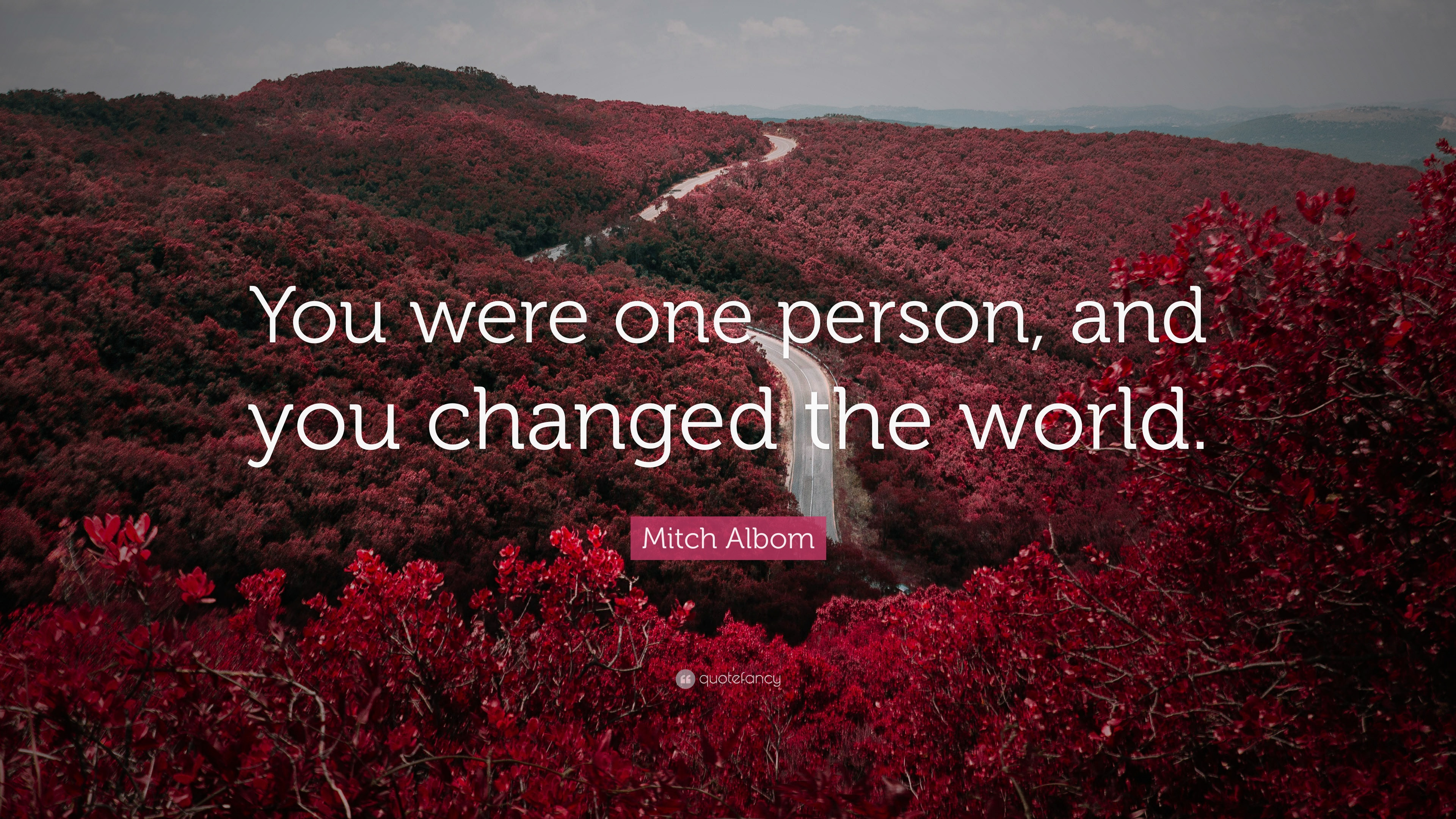 Mitch Albom Quote You Were One Person And You Changed The World