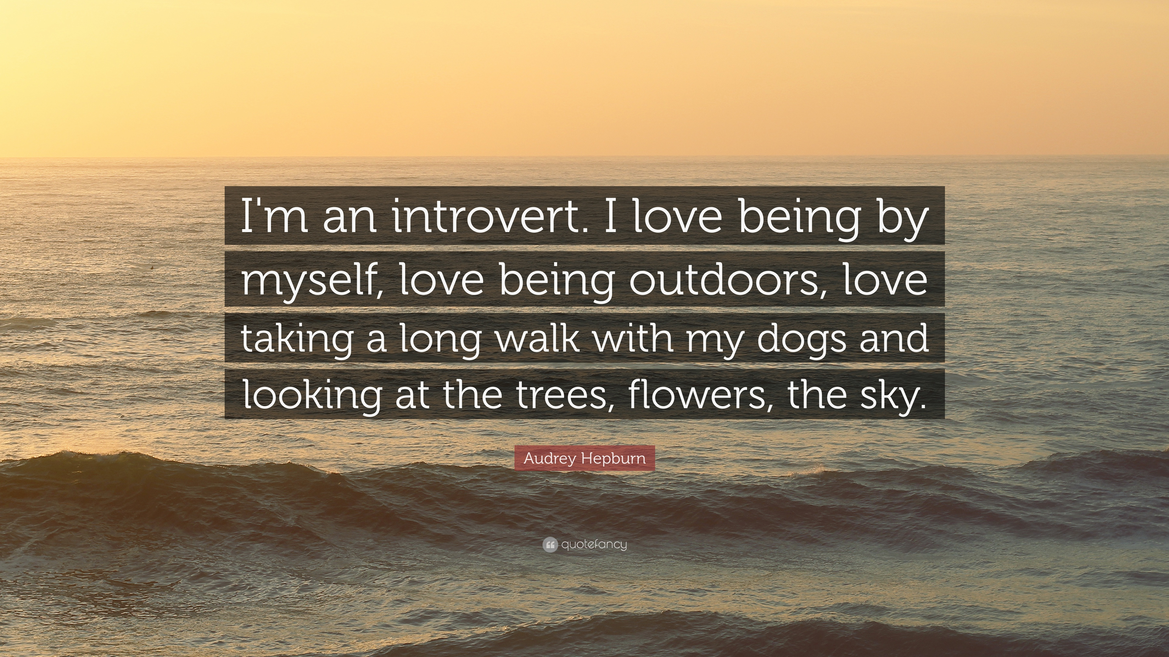 "I Love Myself Quotes Audrey Hepburn Quote ""I'm An Introverti Love Beingmyself"