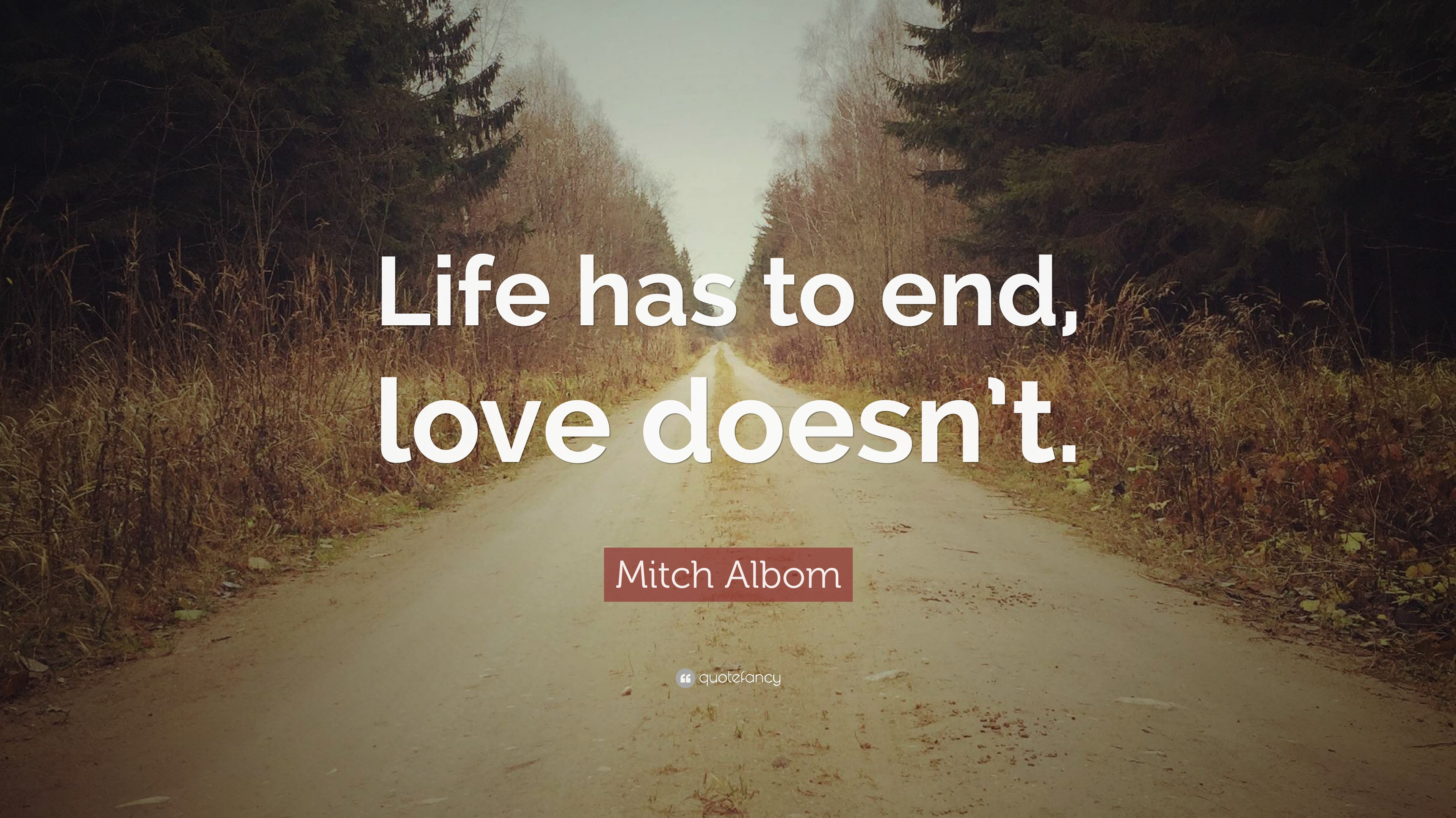Mitch Albom Quote Life Has To End Love Doesn T 12 Wallpapers