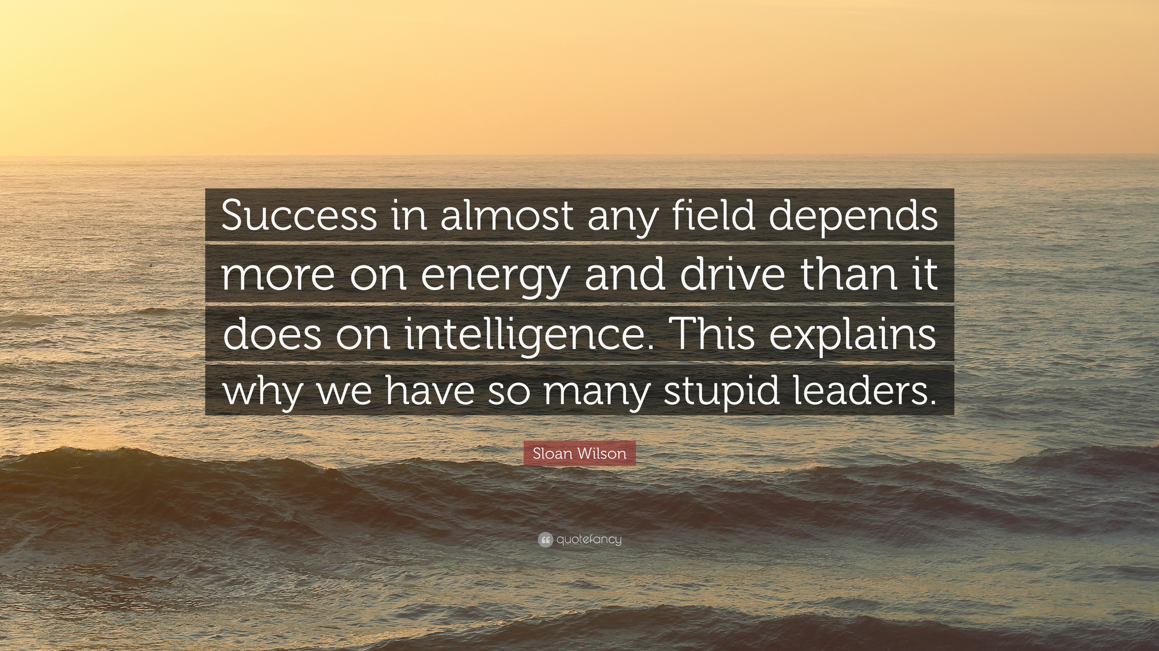 """Sloan Wilson Quote: """"Success in almost any field depends"""