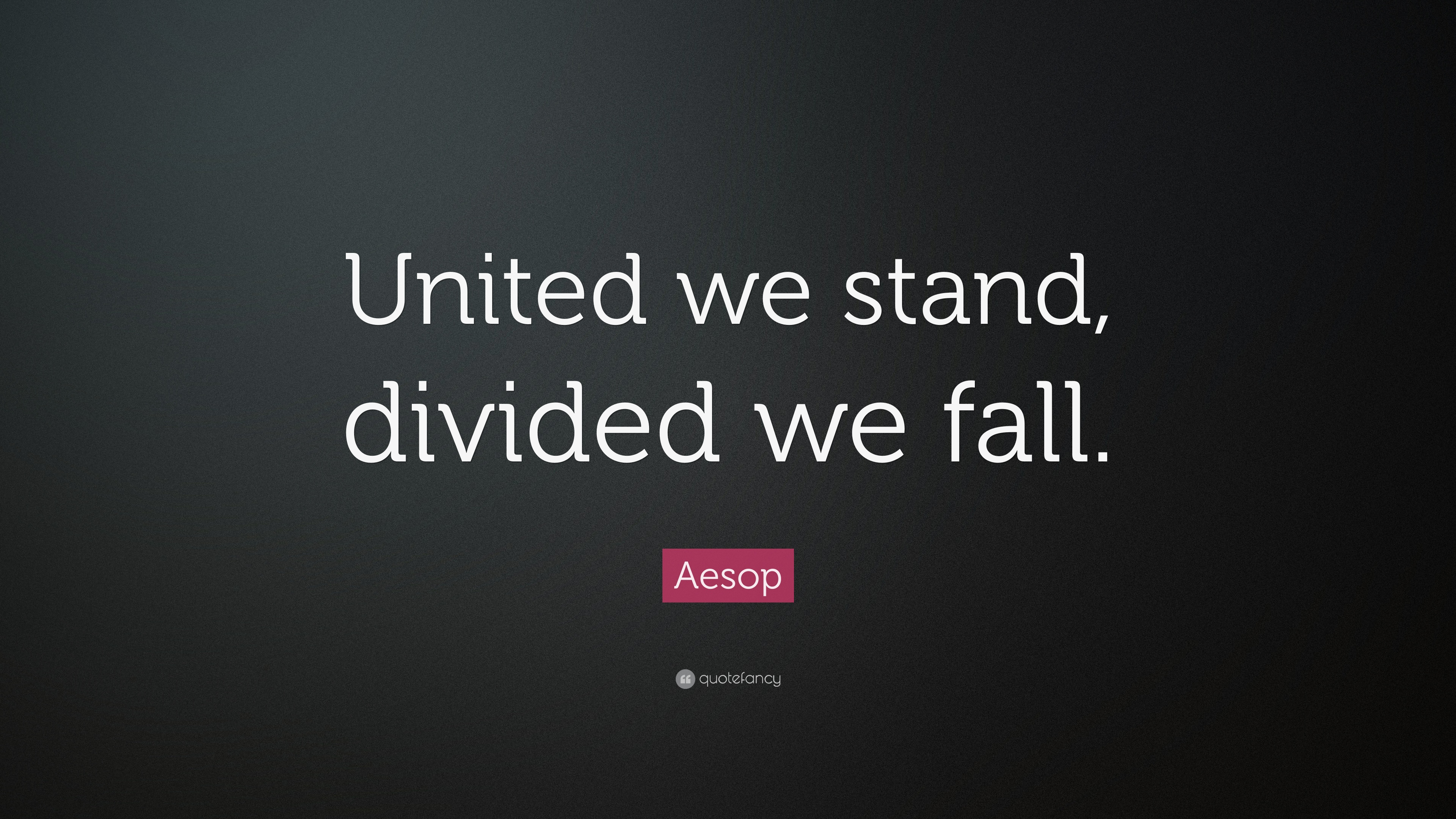 coopetition united we stand divided we fall essay