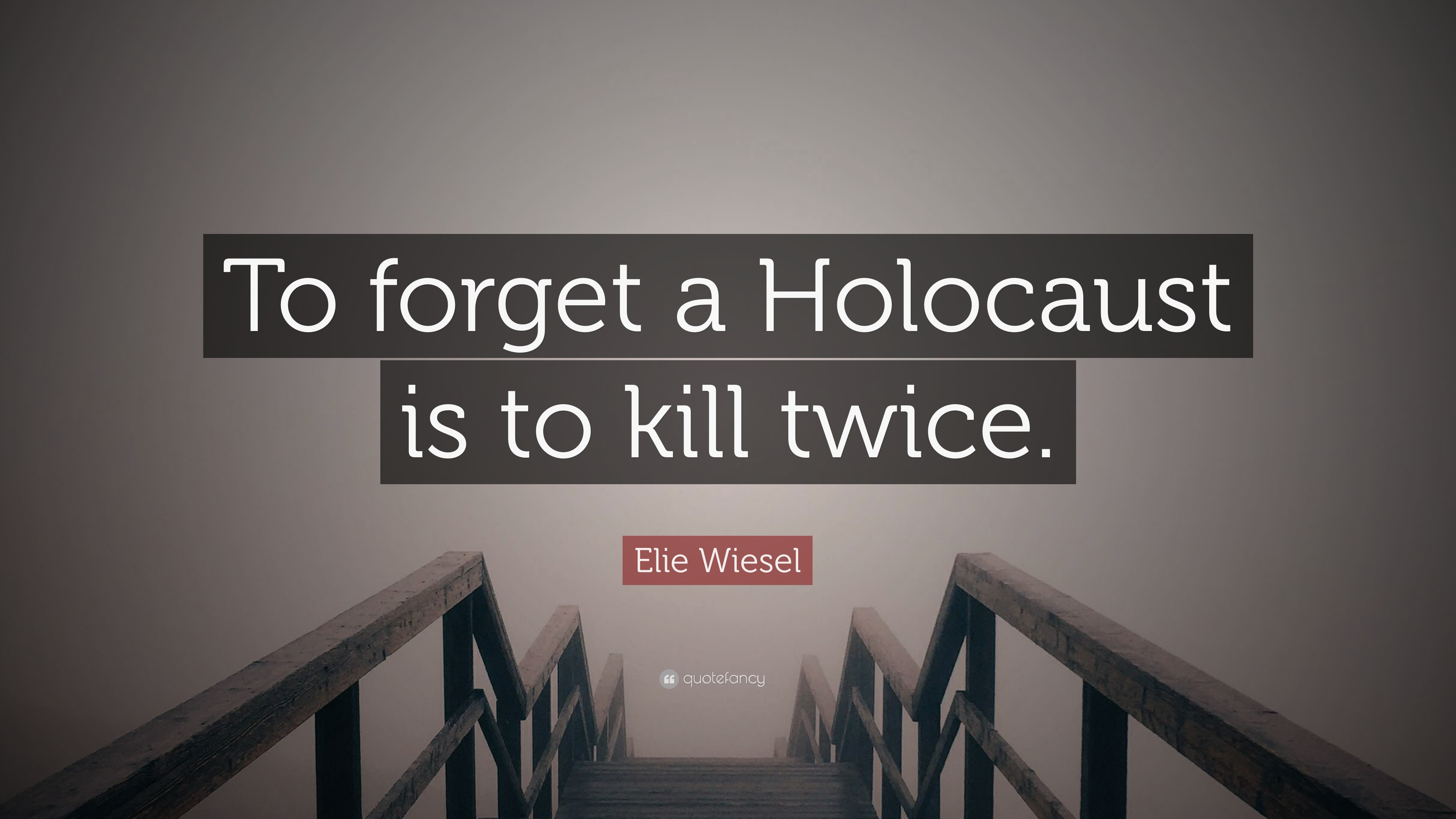 a boys survival of the holocaust in night by elie wiesel
